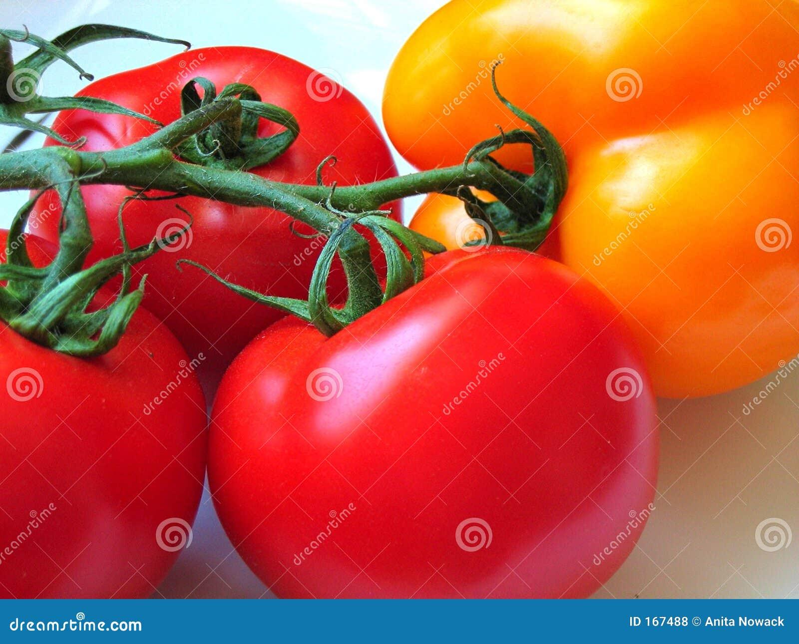 Pepperbell蕃茄