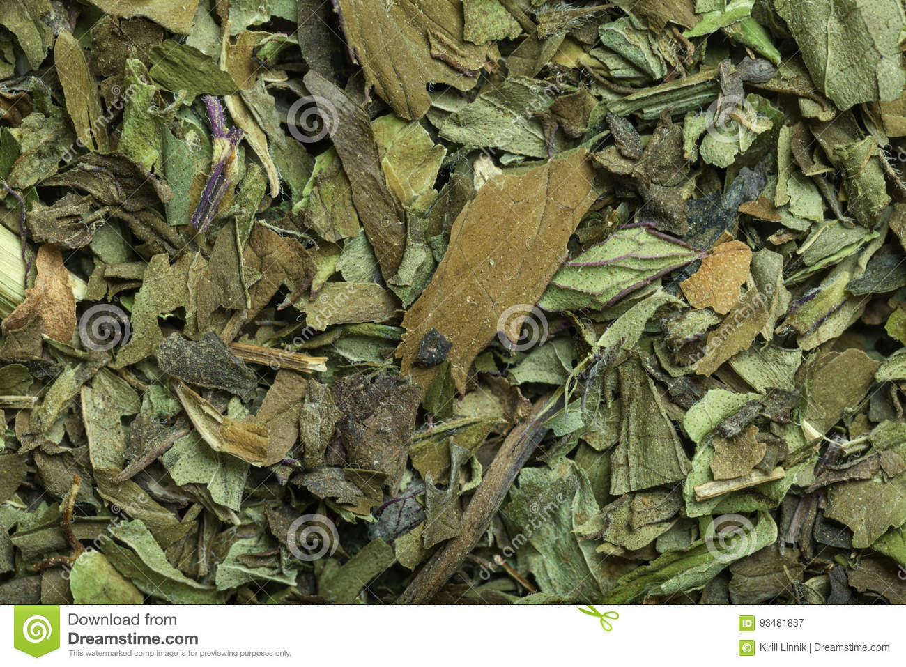 Download Peppermint tea in macro stock image. Image of green, menthol - 93481837