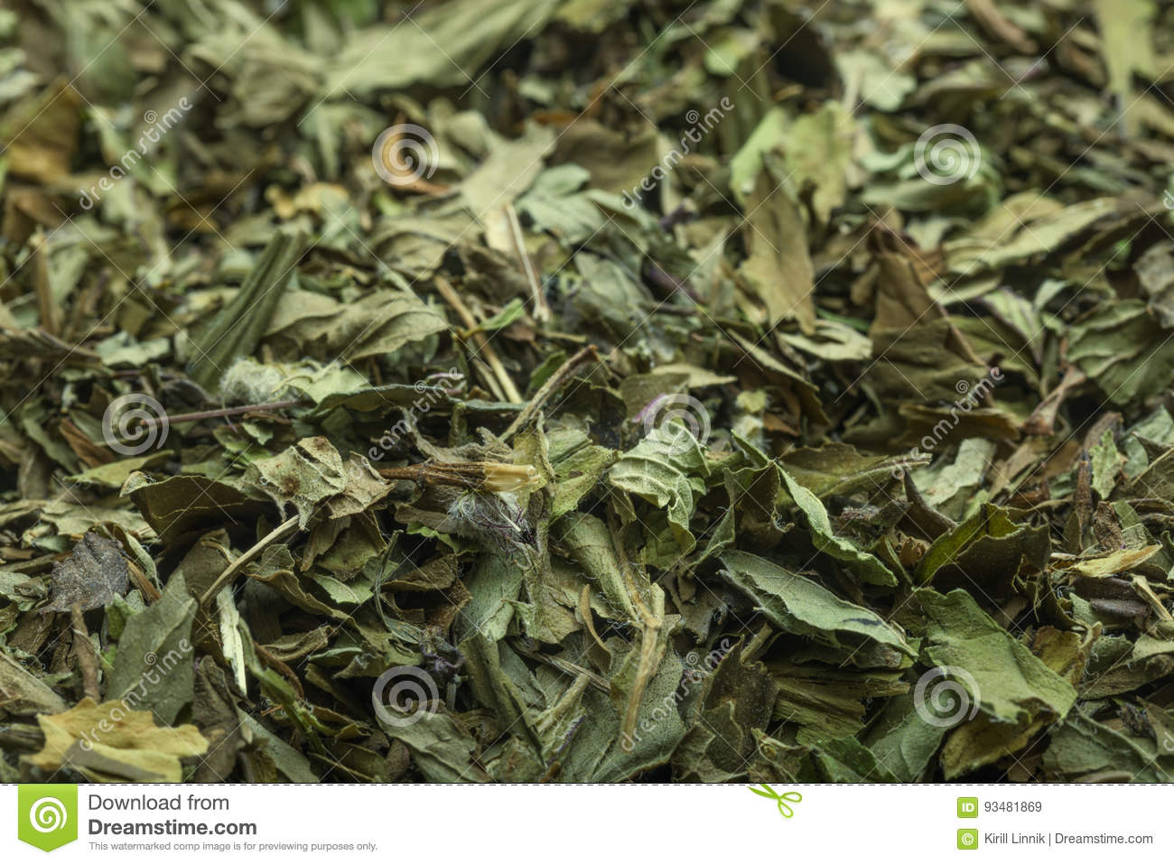 Download Peppermint tea in macro stock image. Image of organic - 93481869