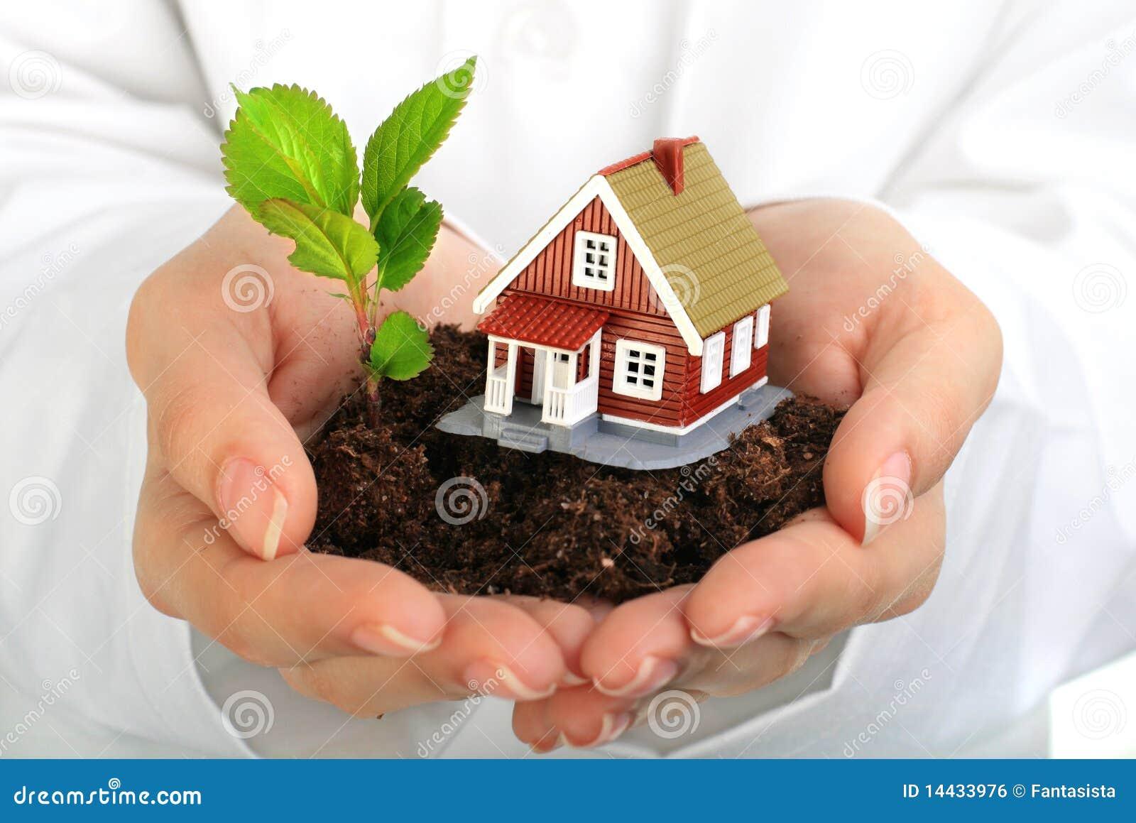 Pequeña casa y planta en manos.