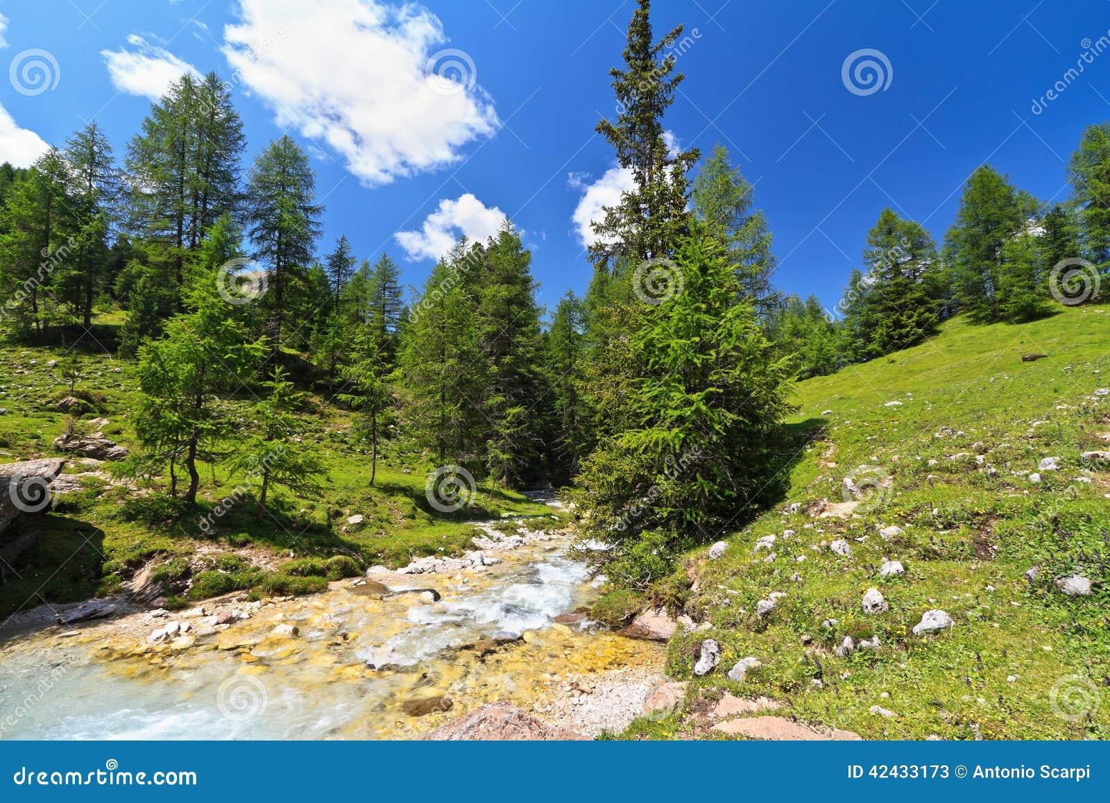 Pequeña corriente en el valle de Contrin