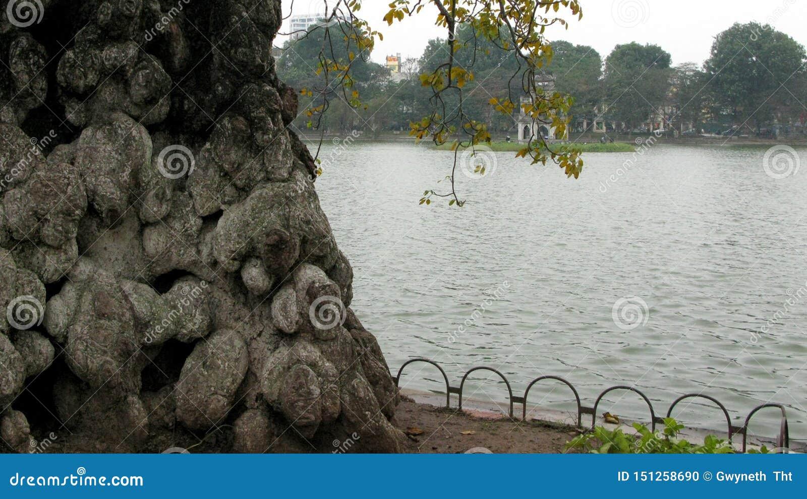 Pequeña esquina en el lago en otoño