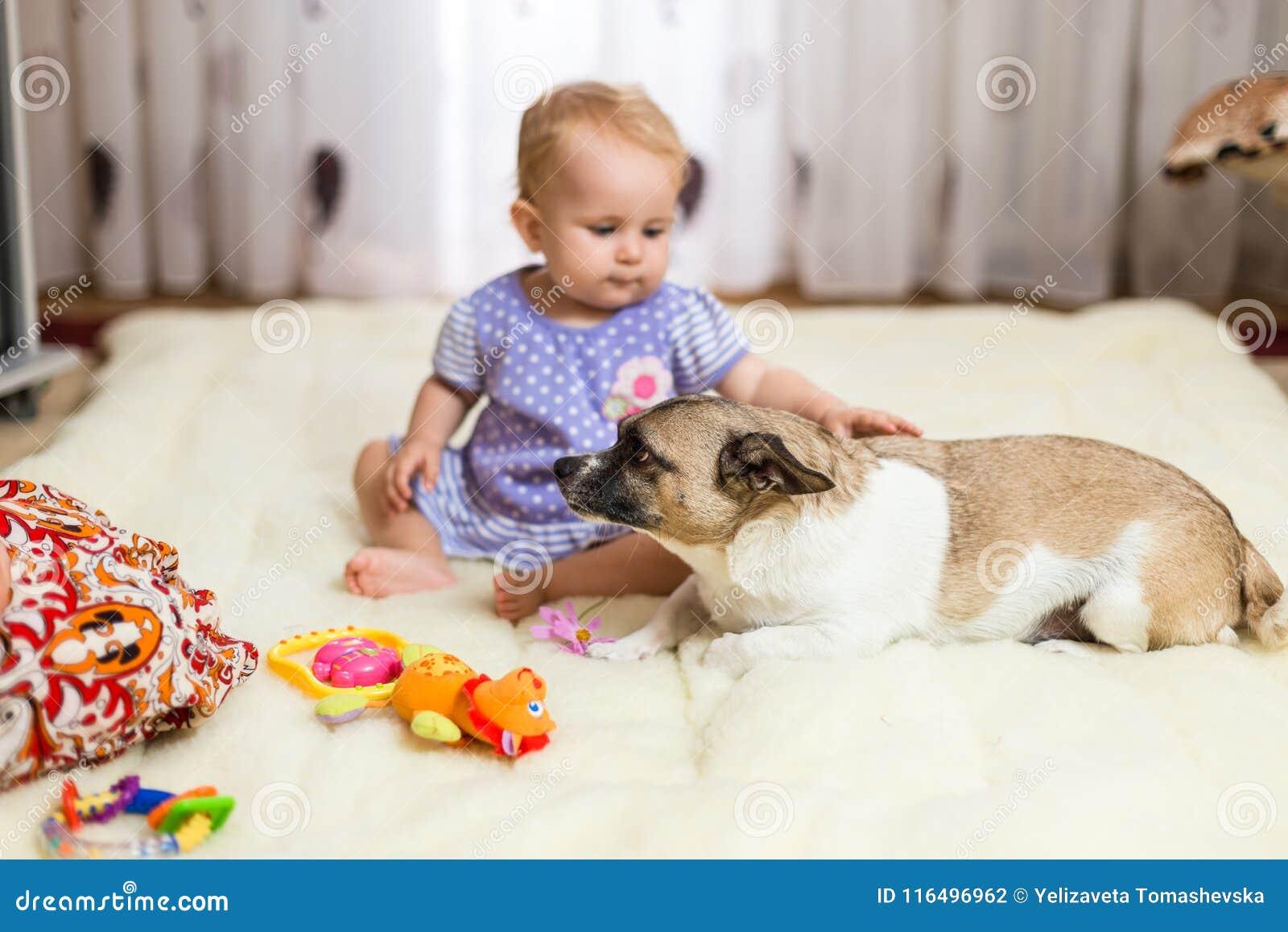Pequeña muchacha caucásica divertida que el niño se sienta en casa en el piso en una alfombra ligera con el mejor amigo del perro