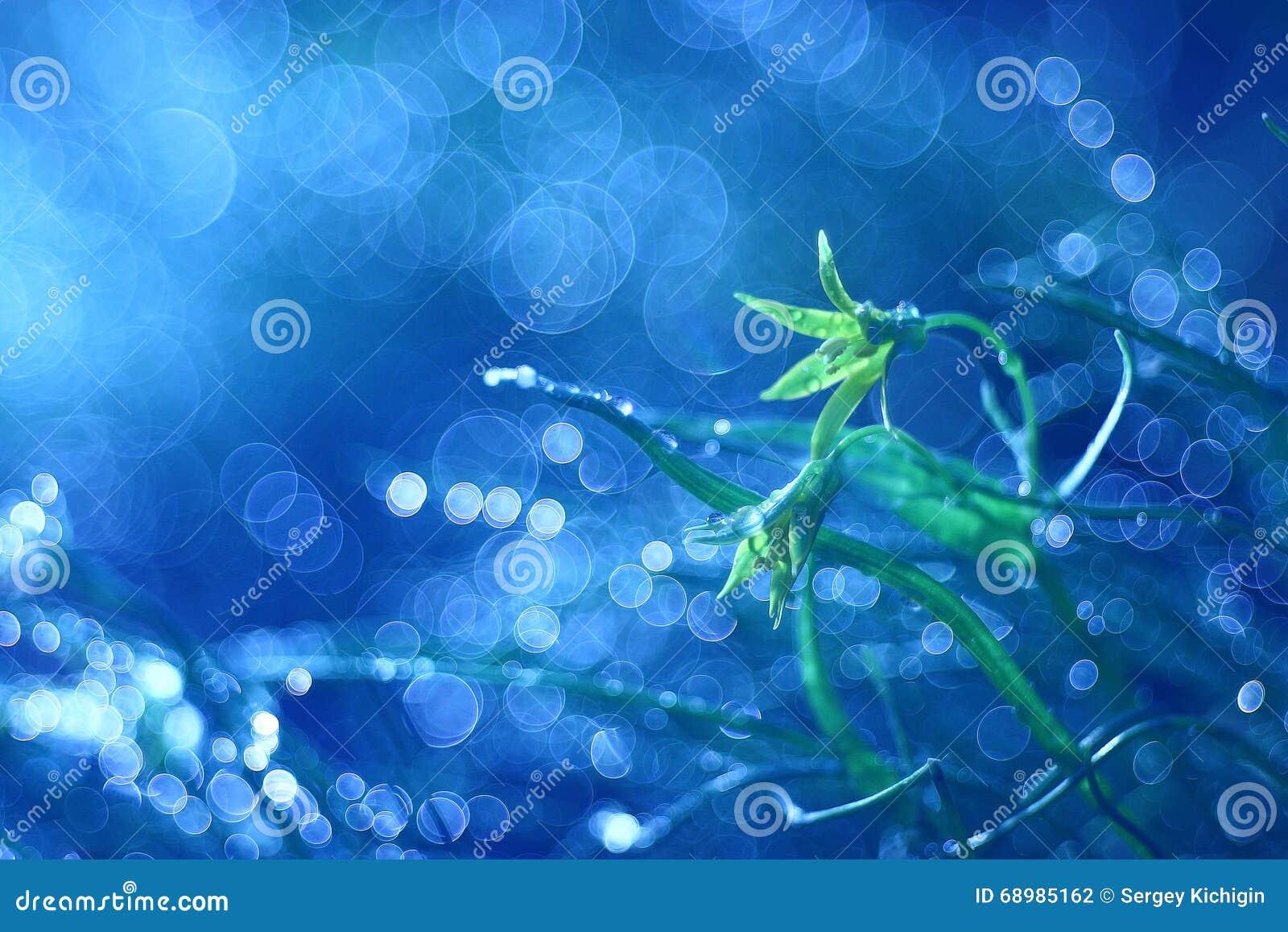Pequeñas flores azules de la primavera