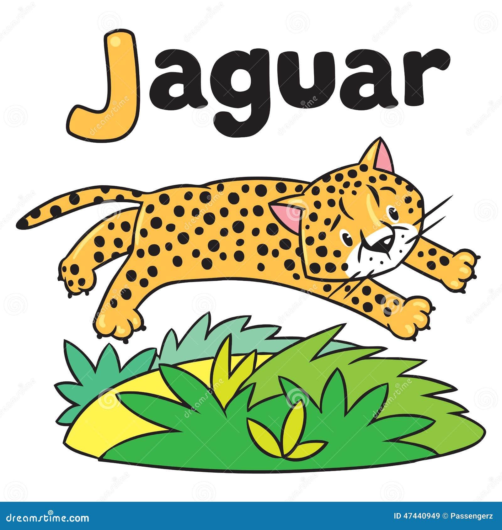 Pequeño Guepardo O Jaguar Para ABC Alfabeto J Stock de ilustración ...