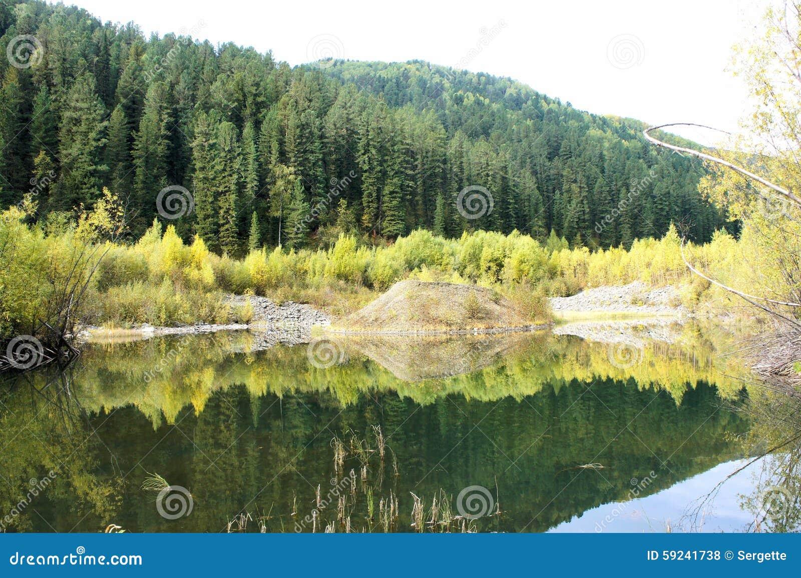Pequeño lago de madera en el bosque Primavera