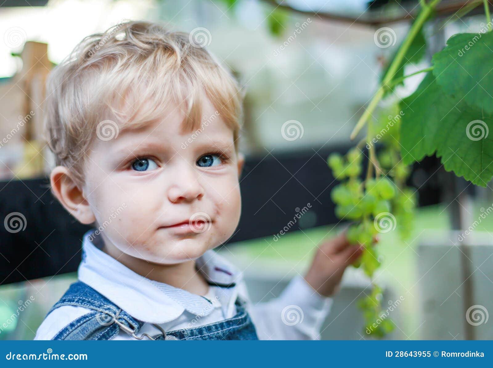 Peque o ni o peque o que come la uva foto de archivo libre - Foto nino pequeno ...