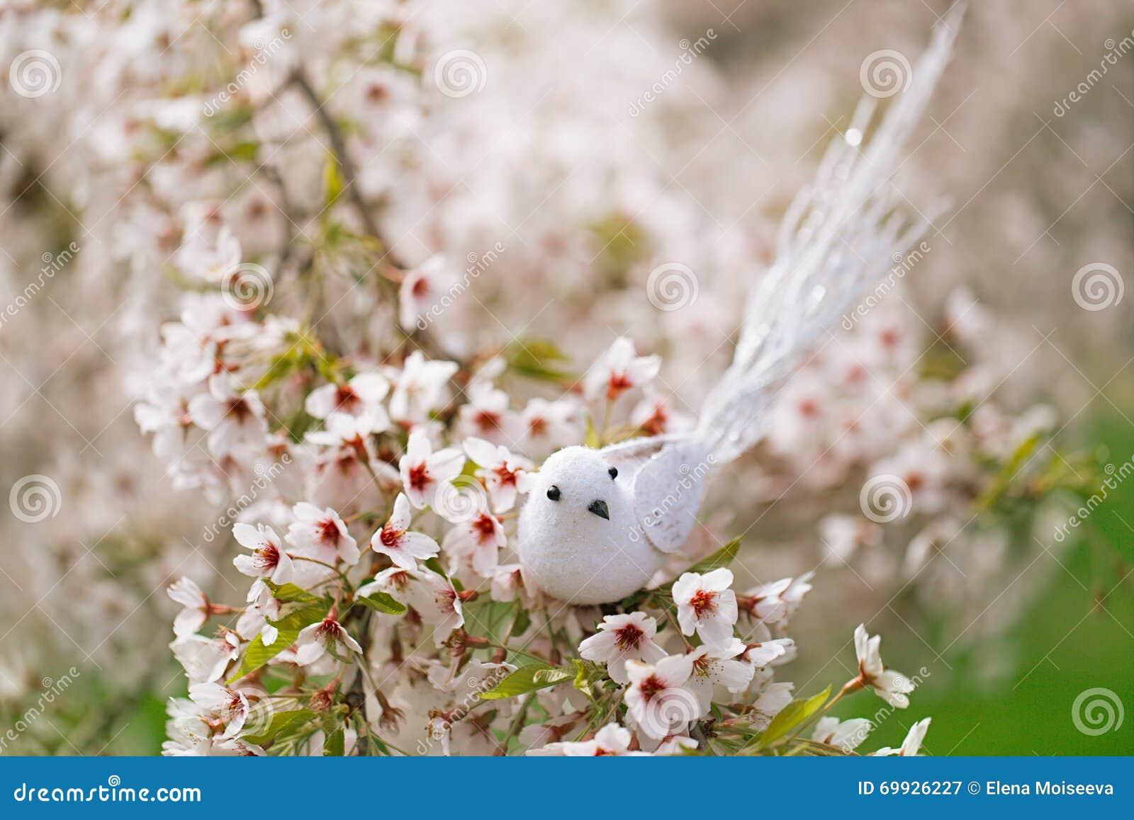 Pequeño pájaro en primavera con la cereza del flor