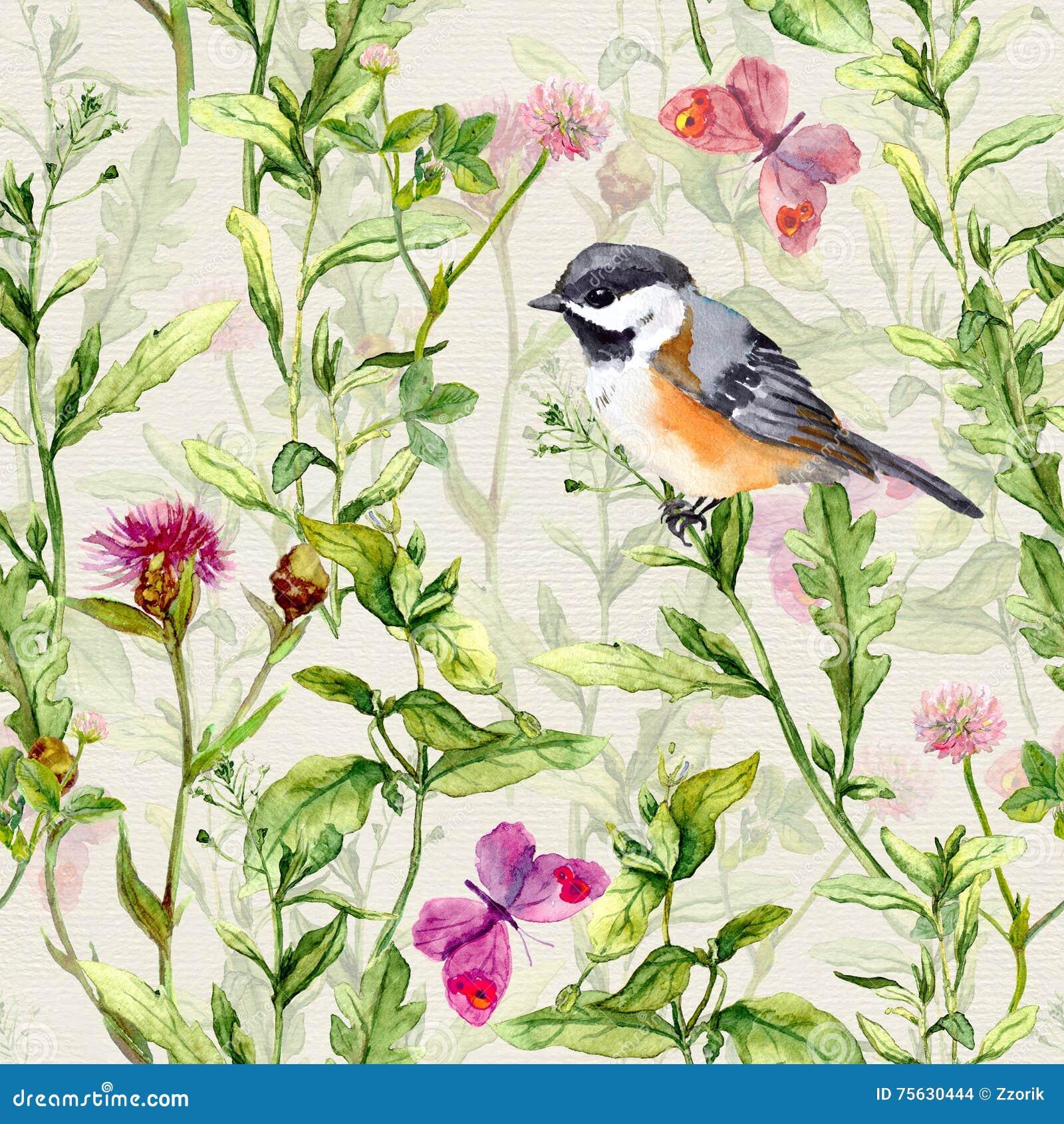 Pequeño pájaro, hierba de prado de la primavera, flores, mariposas Relanzar el modelo watercolor