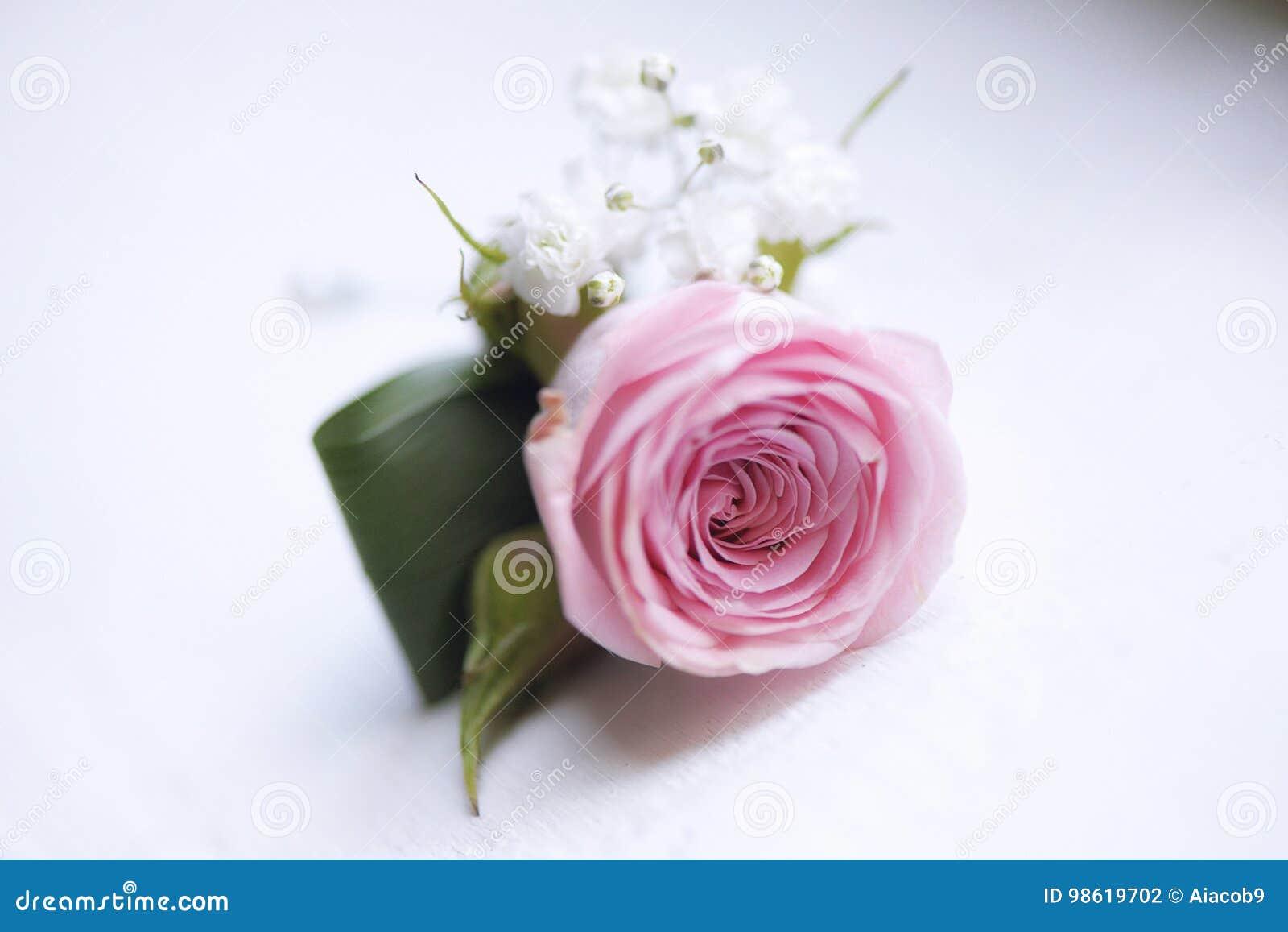 Pequeño Ramo De La Rosa Delicada Del Rosa Para El Ojal Usado Para ...
