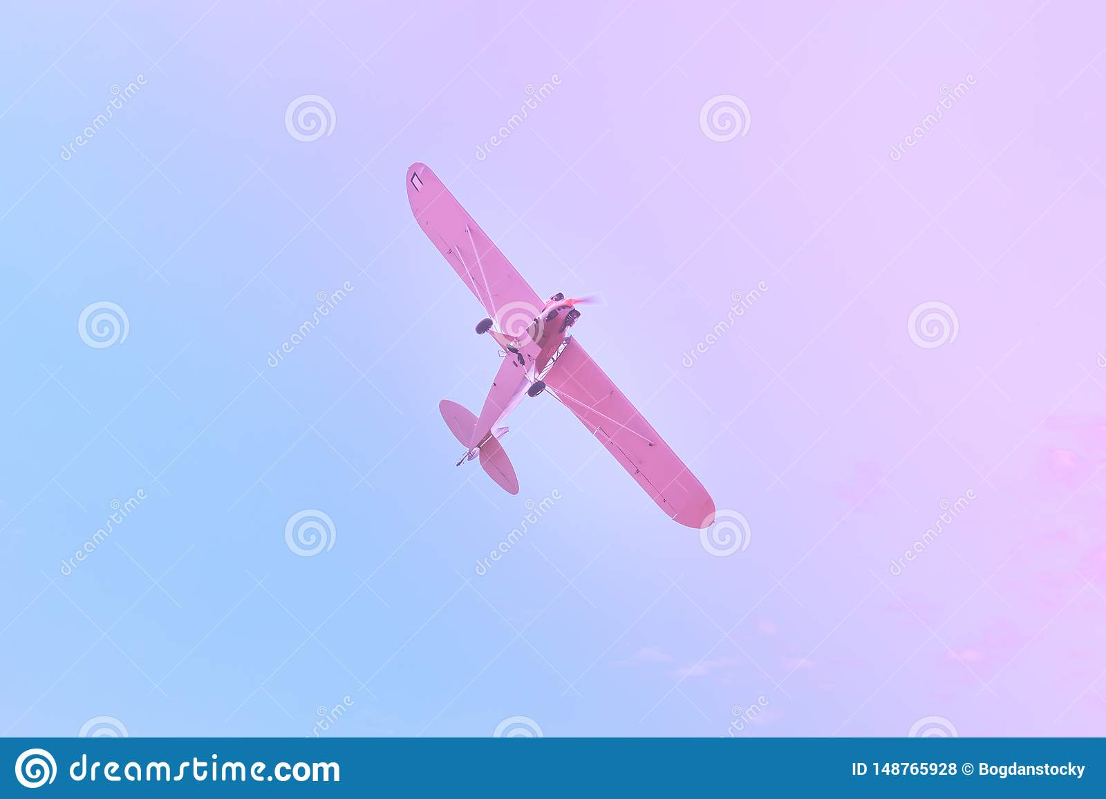 Peque?o vuelo plano contra el azul, cielo p?rpura, rosado