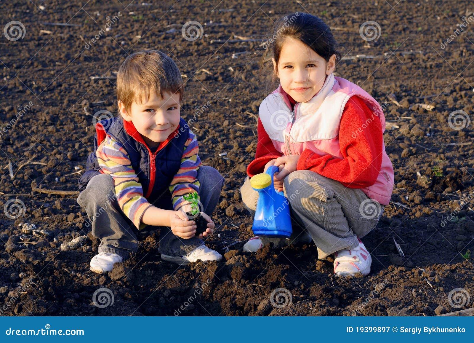Pequeños niños en el campo que siembra la planta