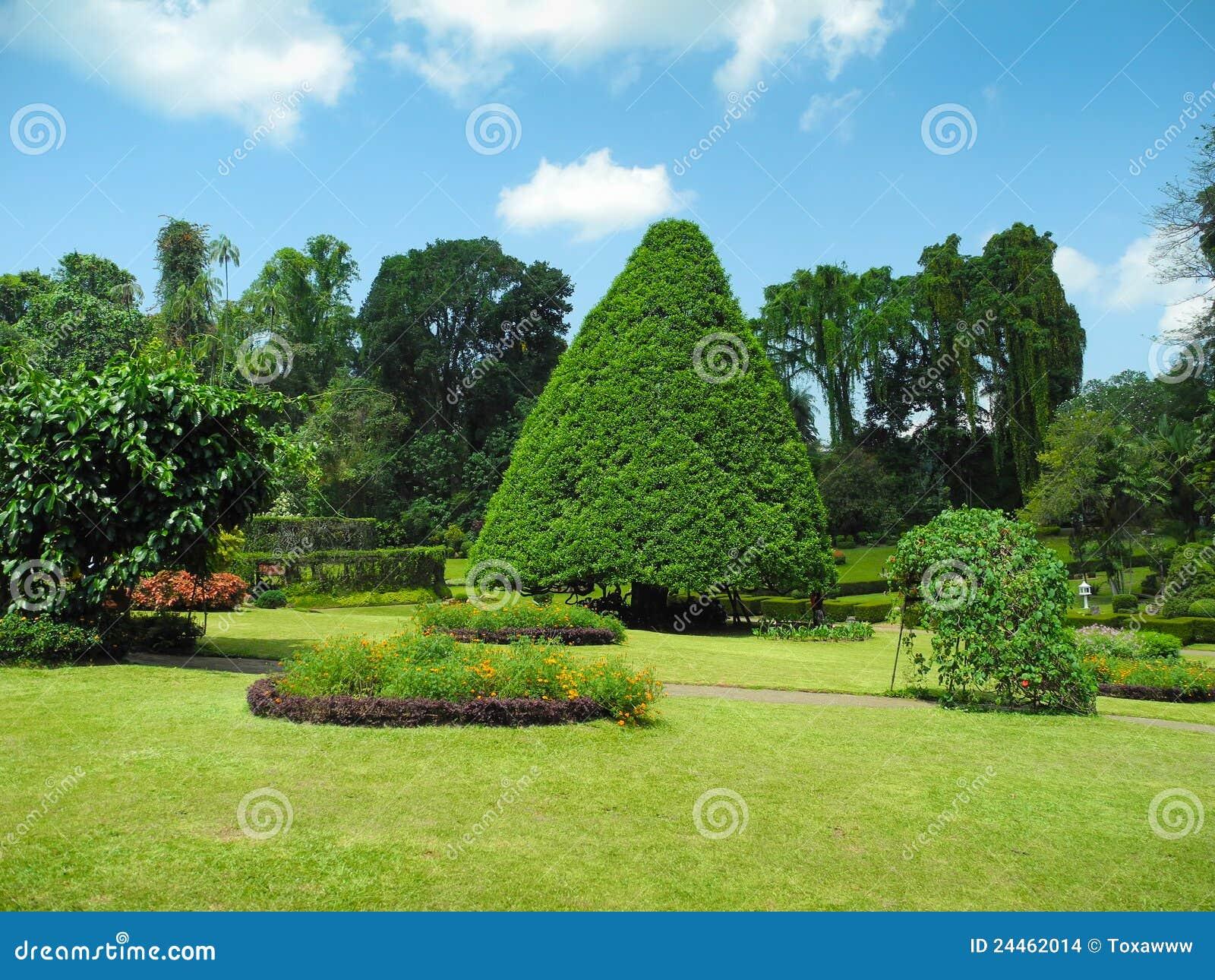 Garden Landscape peradeniya botanical garden landscape stock images - image: 24462014