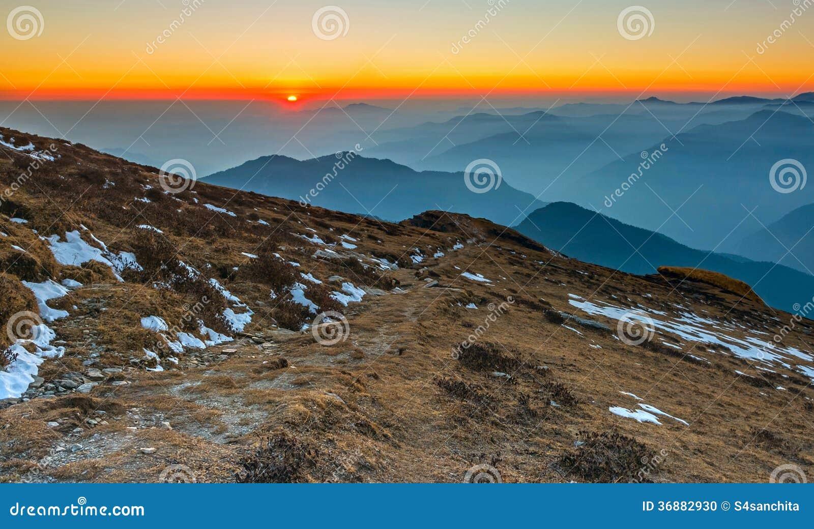 Download Percorso Alla Cima Della Collina Fotografia Stock - Immagine di sole, mattina: 36882930