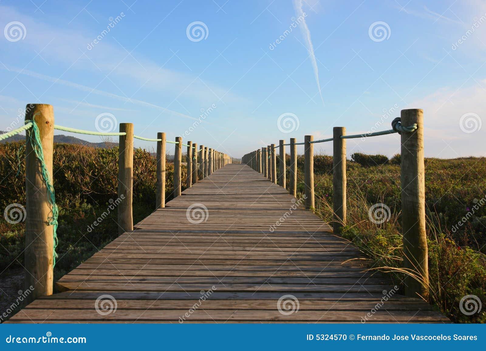 Download Percorso alla spiaggia fotografia stock. Immagine di modo - 5324570