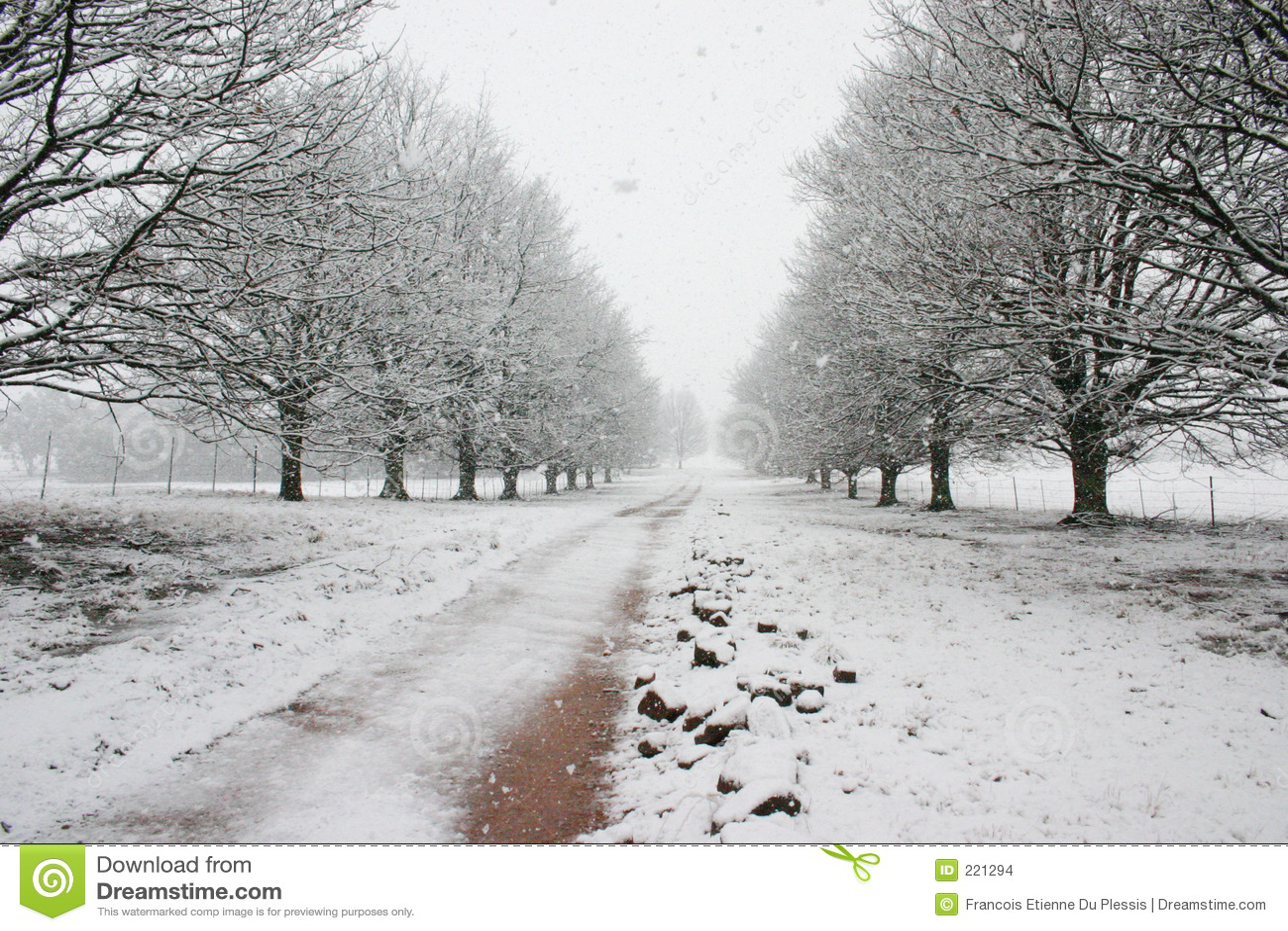Percorso coperto da neve che piombo all orizzonte