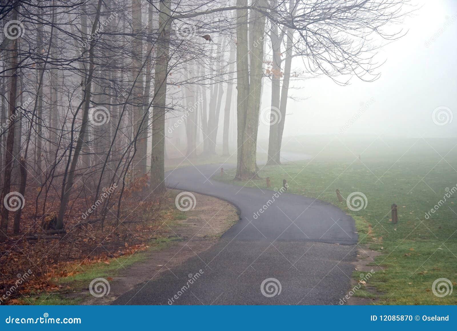 Percorso del carrello di golf in nebbia