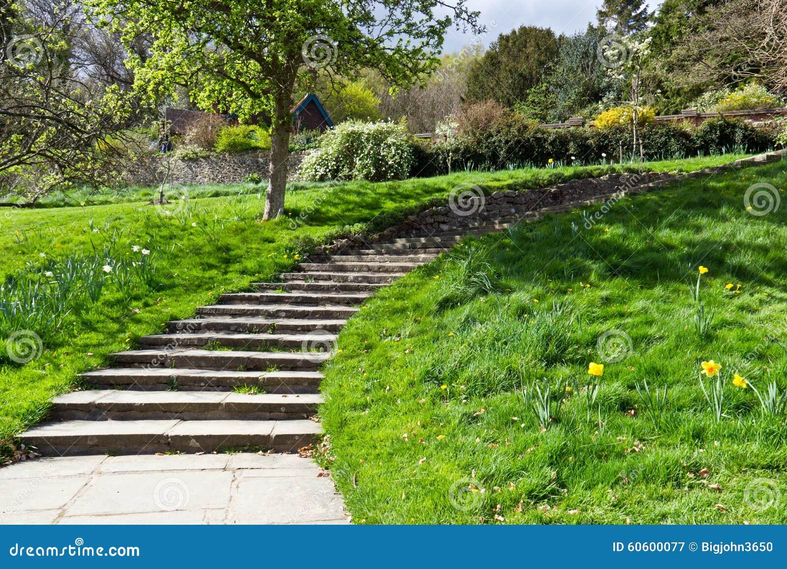 Percorso di camminata con le scale nel giardino verde fotografia stock immagine 60600077 - Scale da giardino ...