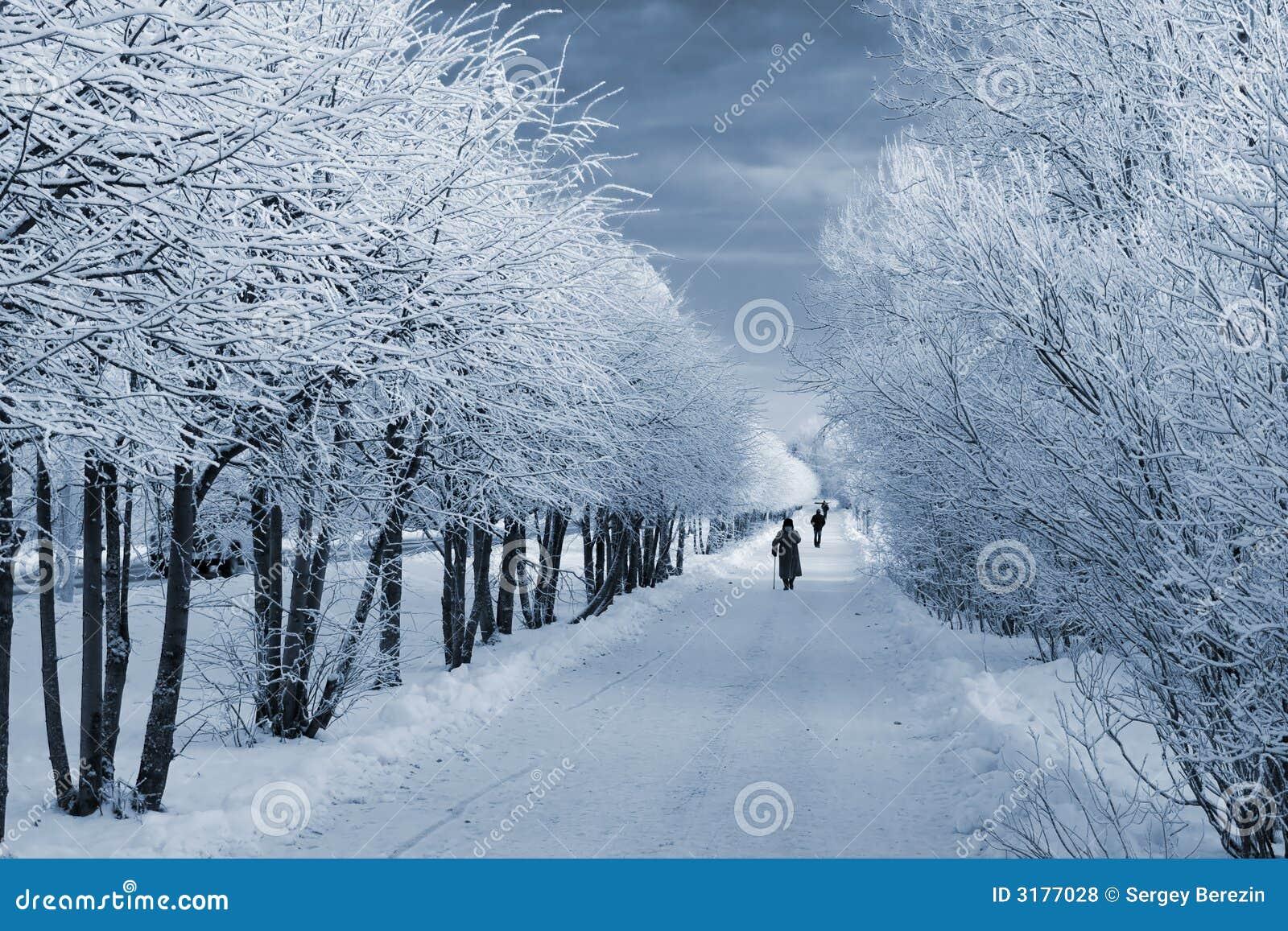 Percorso di inverno