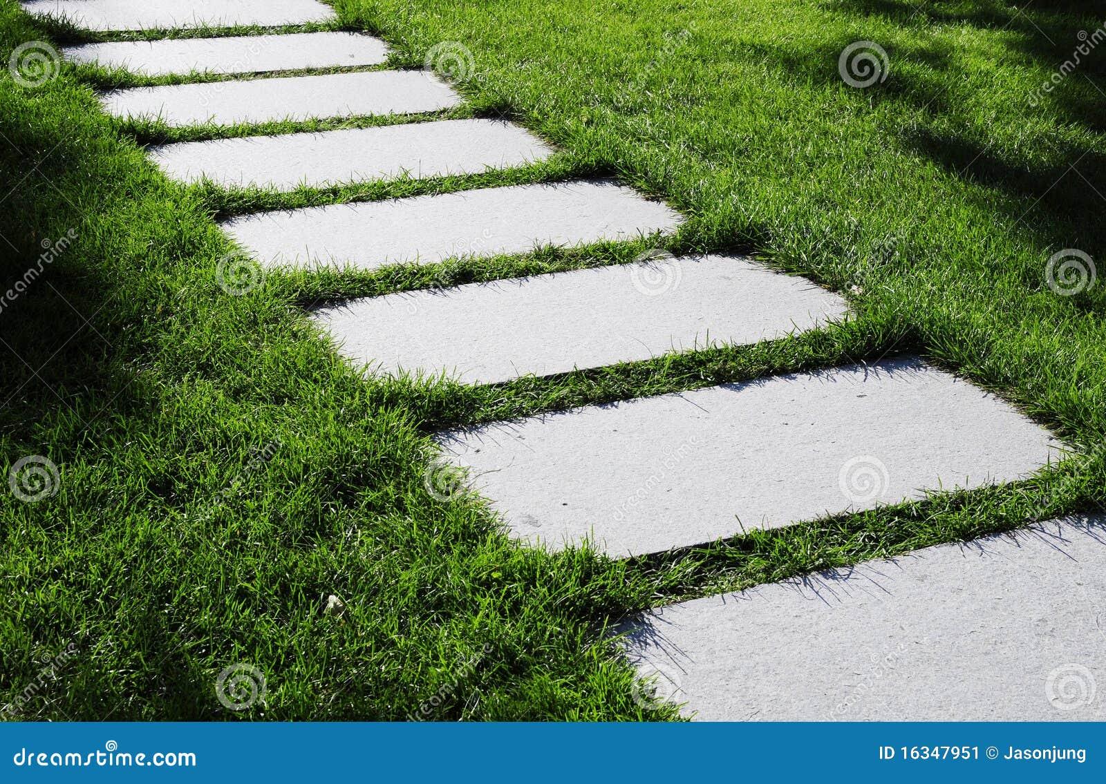 Percorso verde ed il prato verde immagine stock immagine for Prato verde