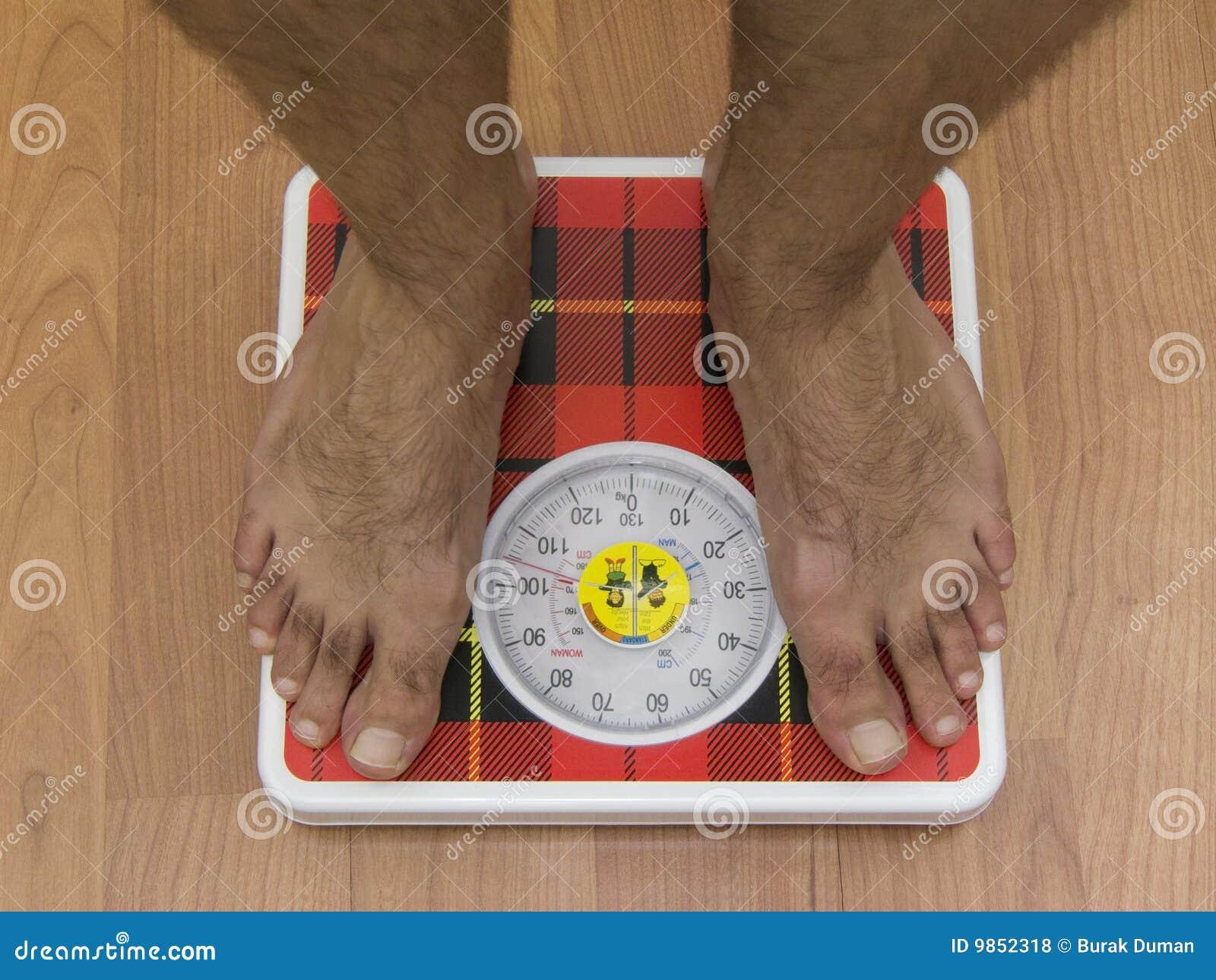 O aparelho de musculação um tambor de rolo de perda de peso