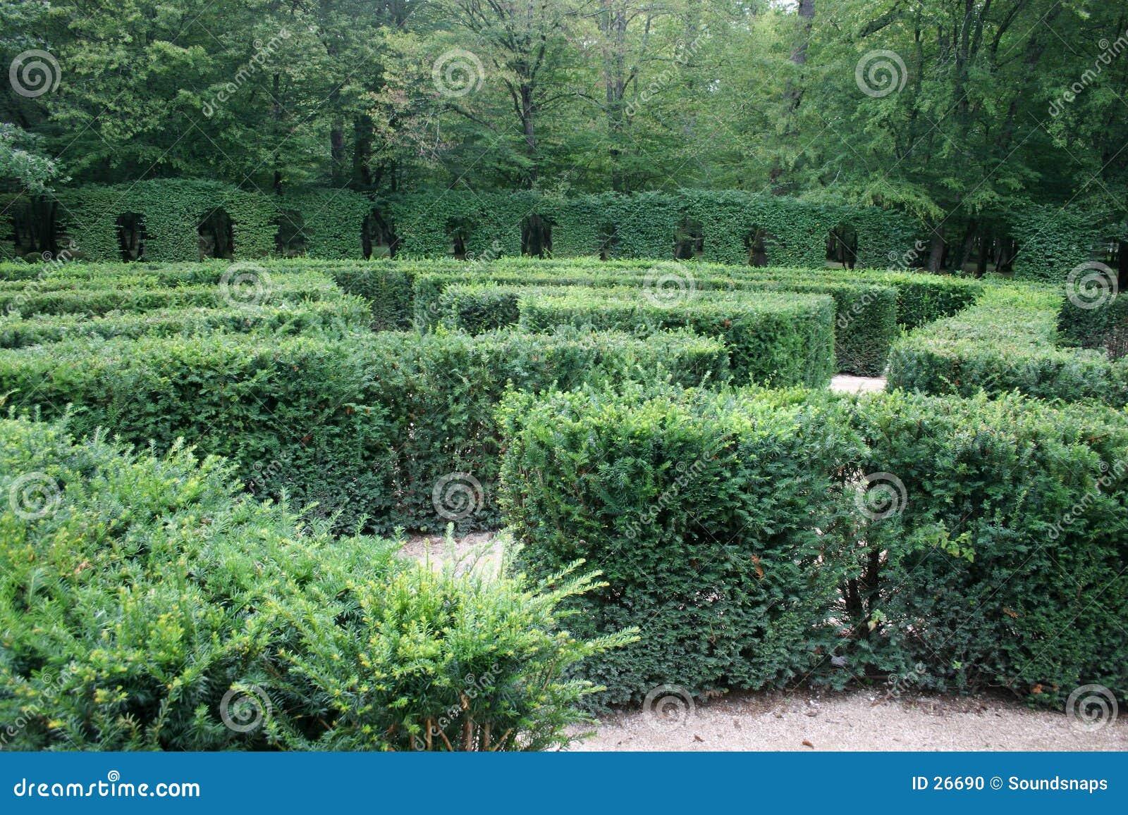 Perdido em um labirinto