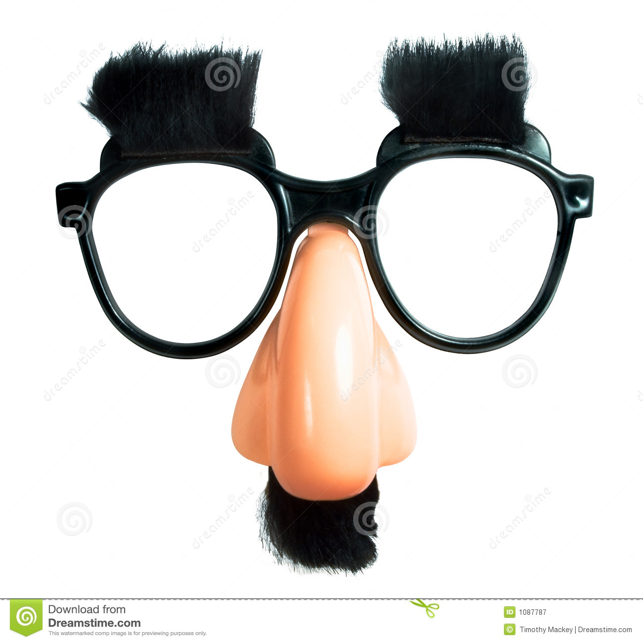 The Perfect Disguise Royalty Free Stock Photography ...