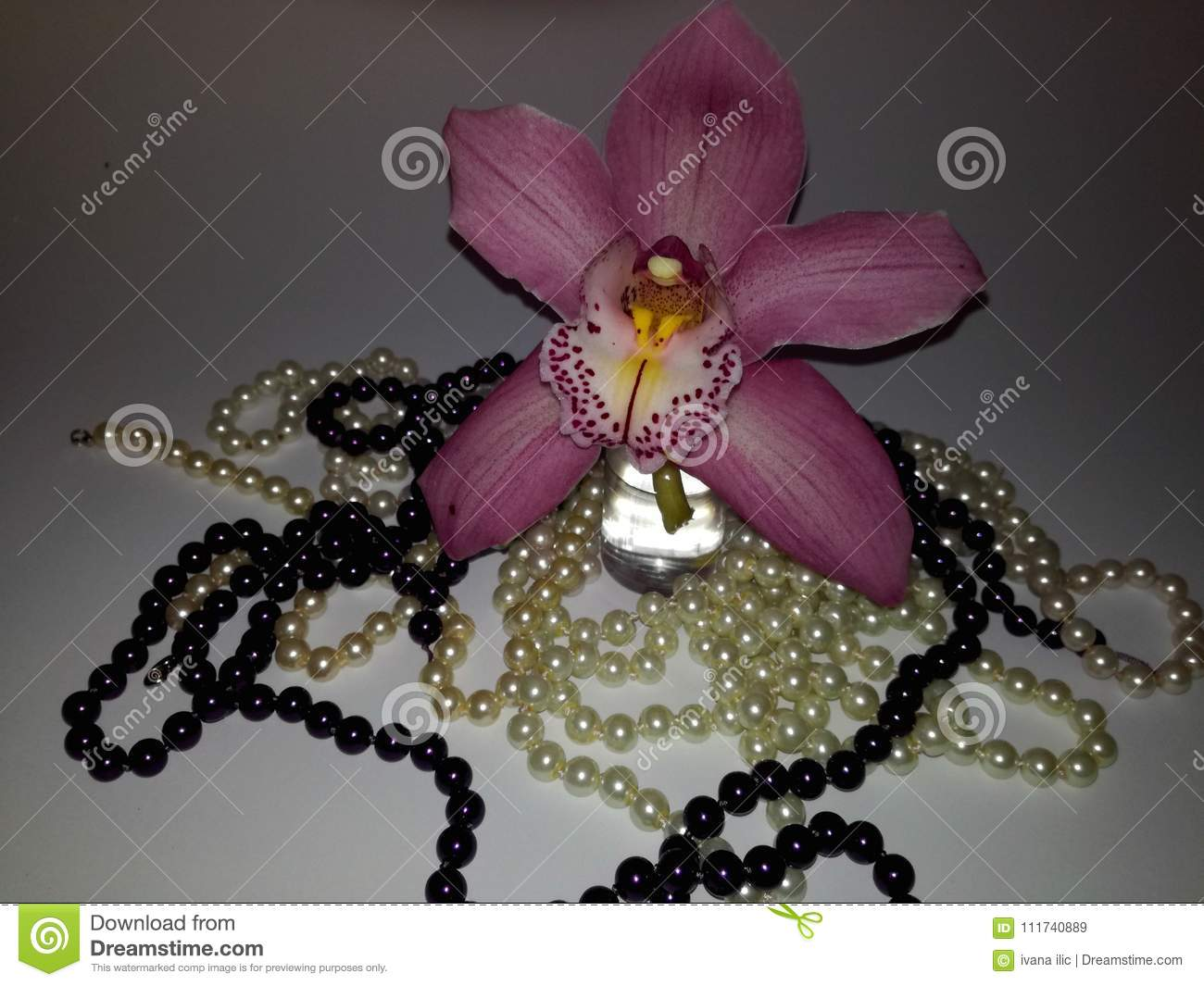 Perfect pink and purple orchid and pearls