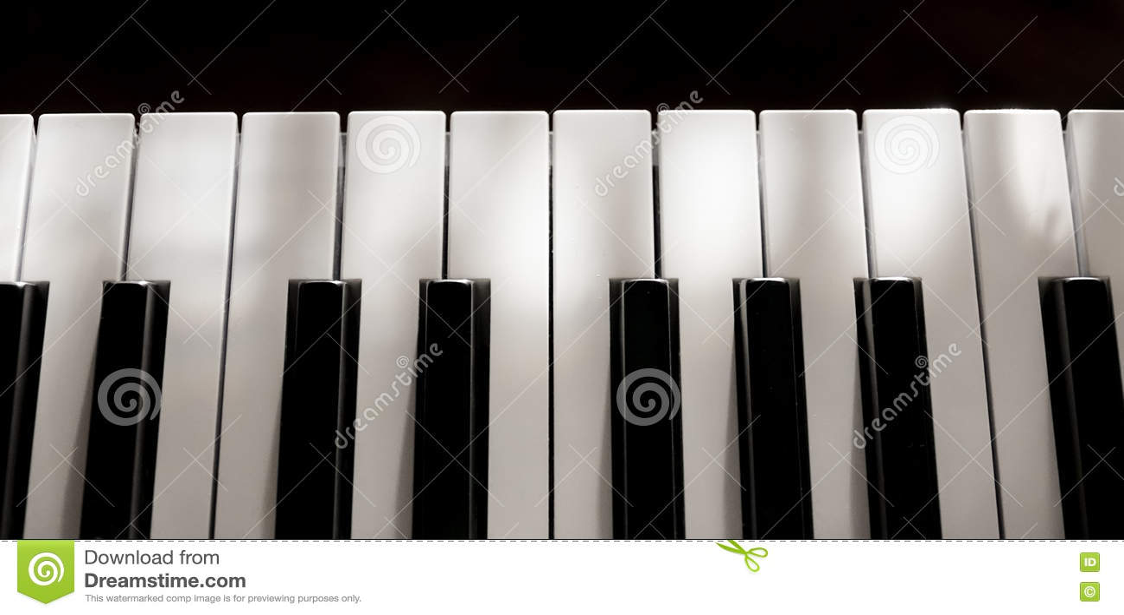 Perfect Pure Piano Keys Mild Sunlight Soft Shadows Isolated