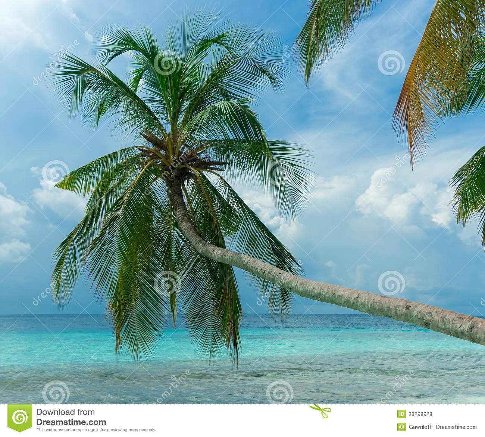 Tropical Island Paradise: Perfect Tropical Island Paradise Beach Stock Photo
