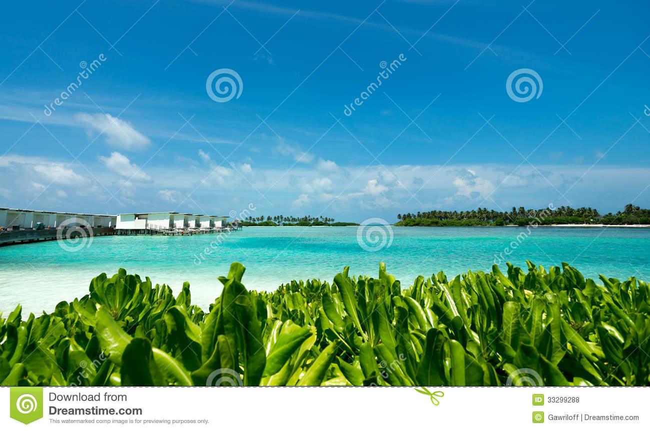 Tropical Island Beach Ambience Sound: Perfect Tropical Island Paradise Beach Royalty Free Stock
