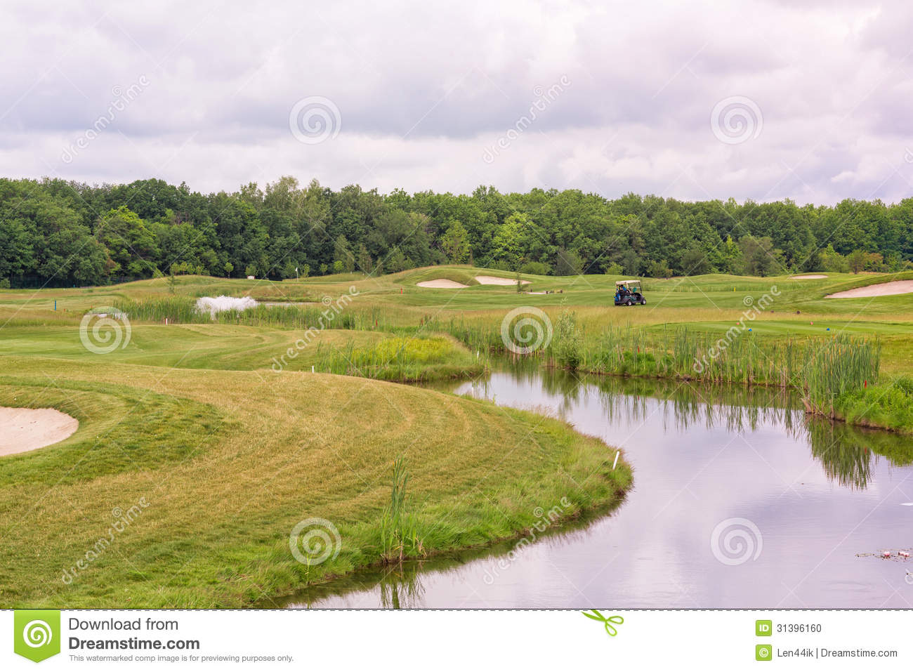 Perfect Wavy Grass On A Golf Field Stock Photo