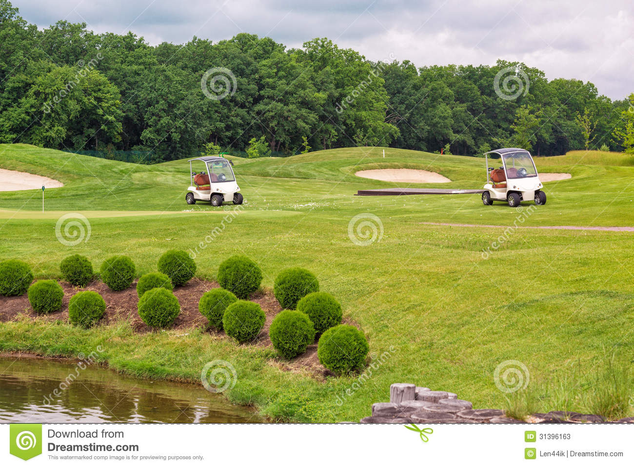 Perfect Wavy Grass On A Golf Field Stock Image