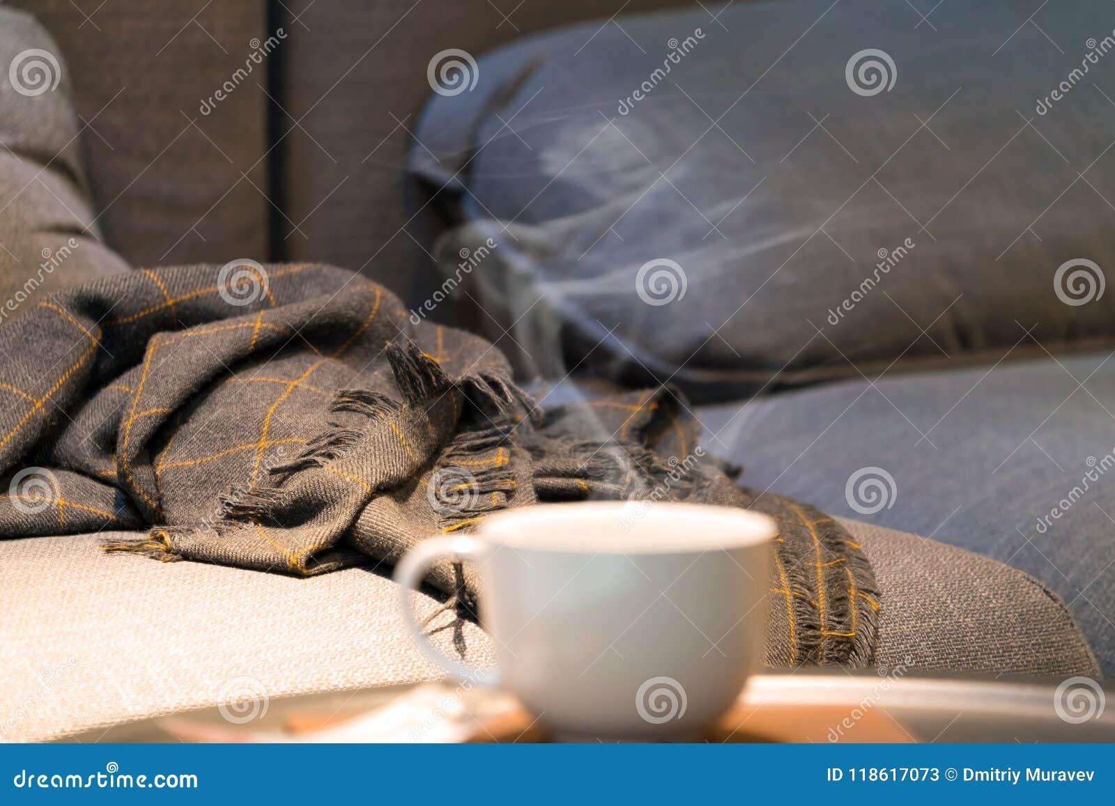 Perfecte avond - comfortabele bank, warme deken en een Kop van geurige hete koffie