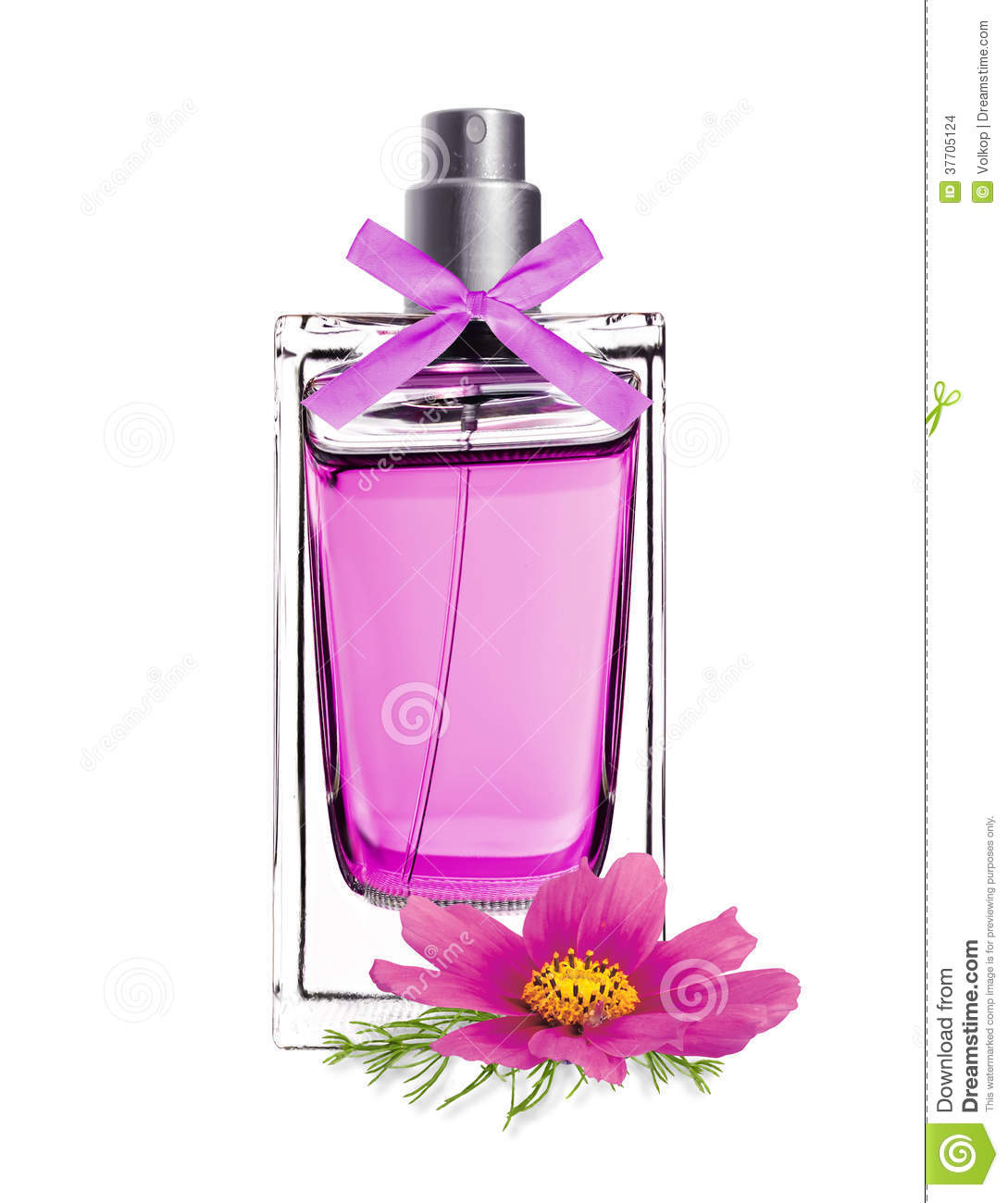 Perfume In Beautiful Bottle With Pink Flower Isolated On White Stock
