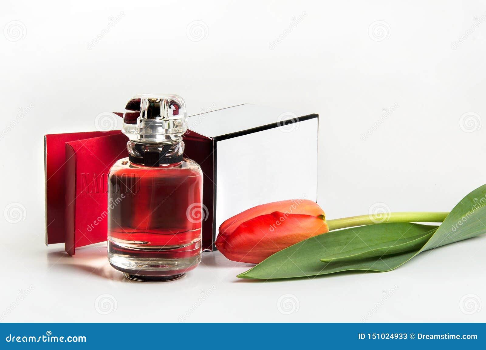 Perfume en una botella y un tulipán en un fondo blanco
