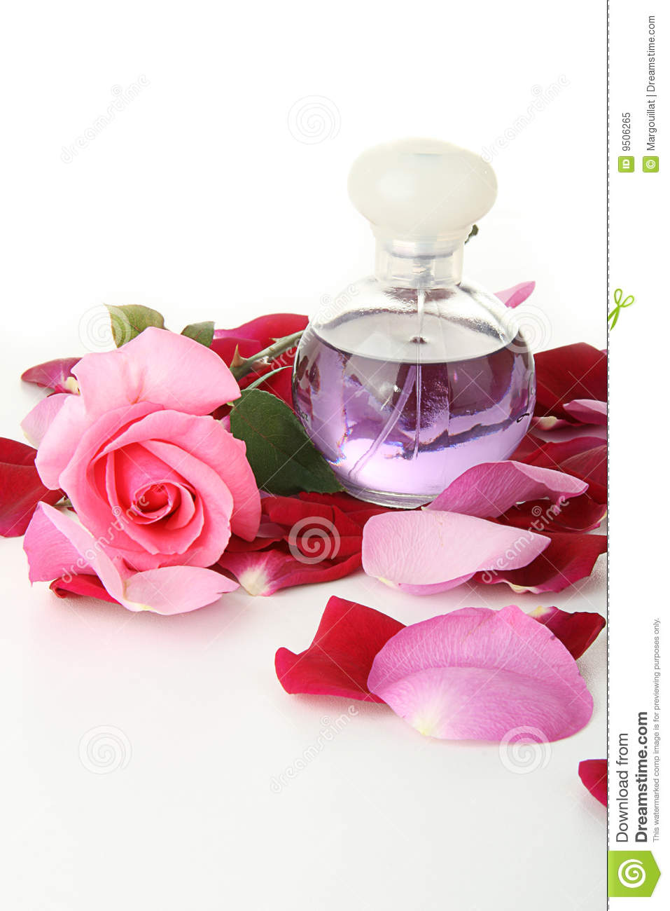 Perfume And Roses Petals Stock Image. Image Of Marry