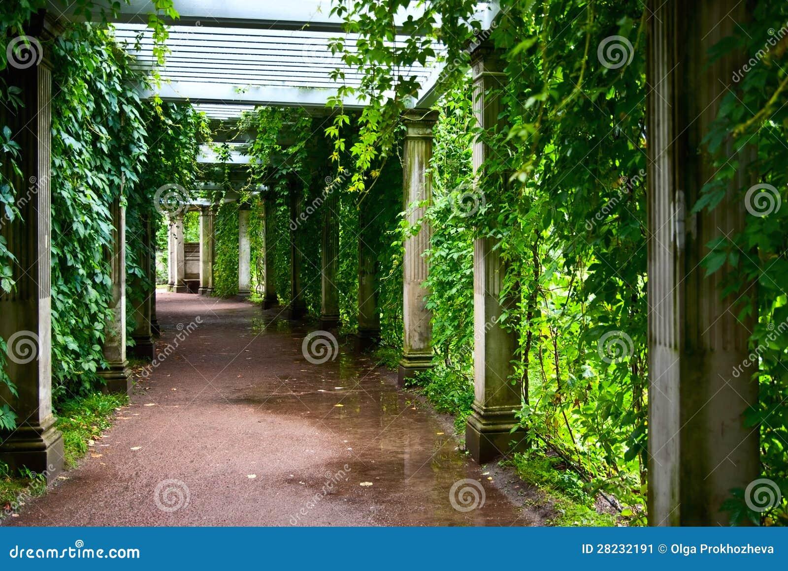 Pergola stockbild. bild von bank leuchte portal garten 28232191