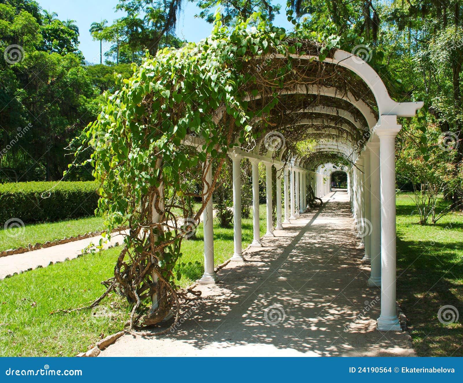 Pergola in botanische tuin in rio de janeiro stock afbeeldingen afbeelding 24190564 - Pergola verkoop ...