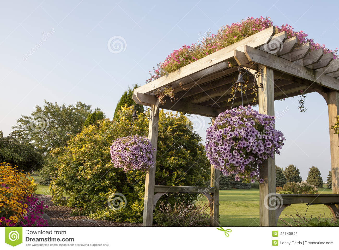 pergola de jardin avec le chemin de marche image stock image du marguerite jardin 43140843. Black Bedroom Furniture Sets. Home Design Ideas