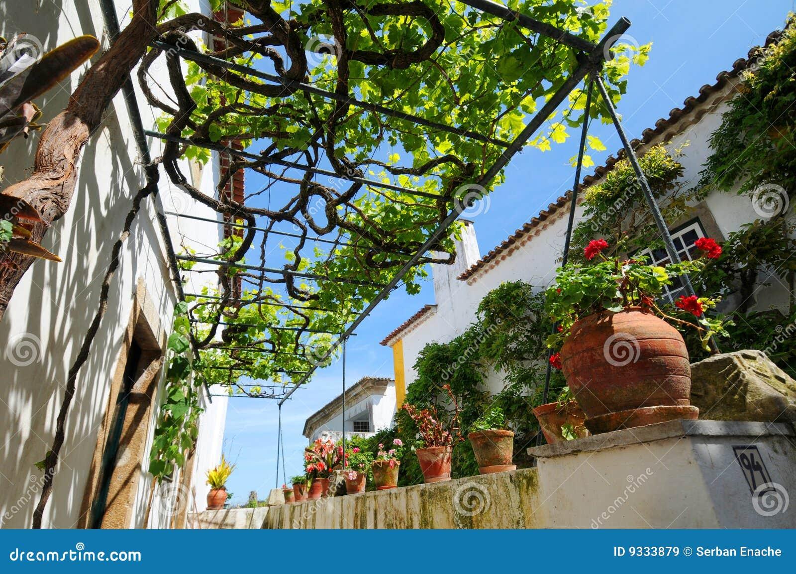 pergola et vigne image stock image du fleuri structures 9333879. Black Bedroom Furniture Sets. Home Design Ideas