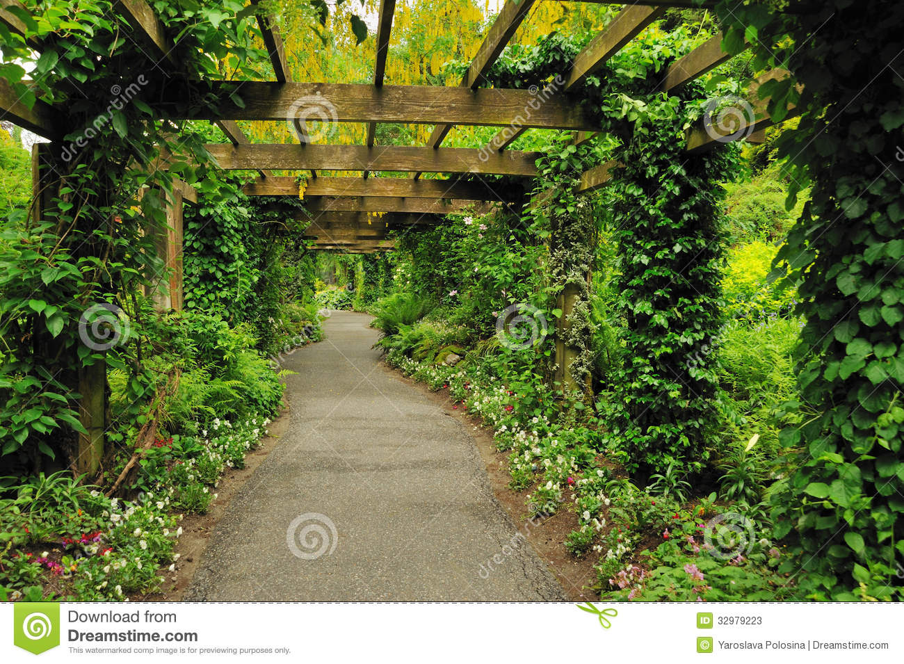 Pergola Stock Photos Image 32979223