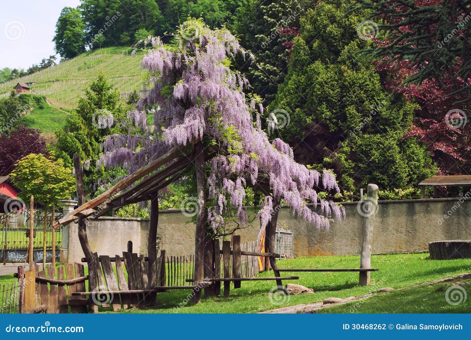 Pergola Stock Photography  Image 30468262