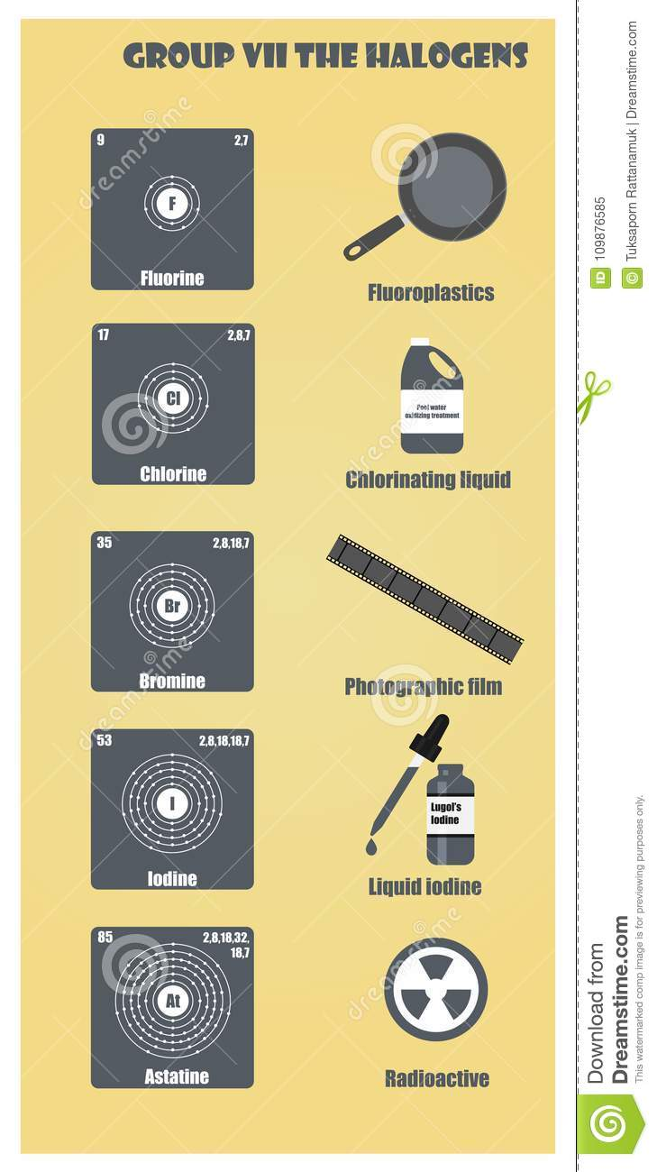 Periodic Table Of Element Group Vii The Halogens Stock Illustration