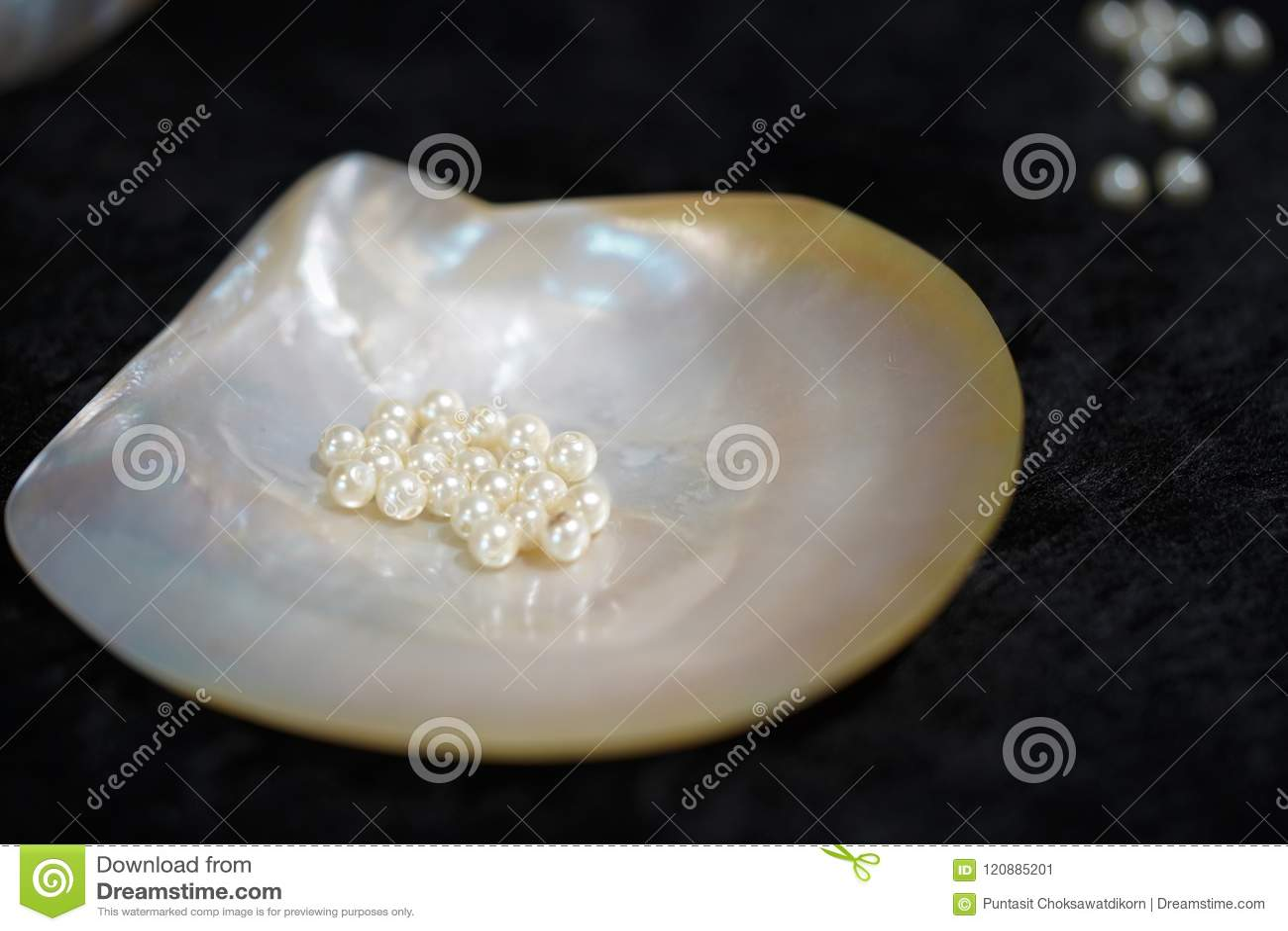 Perle incorporée en Shell Pearl