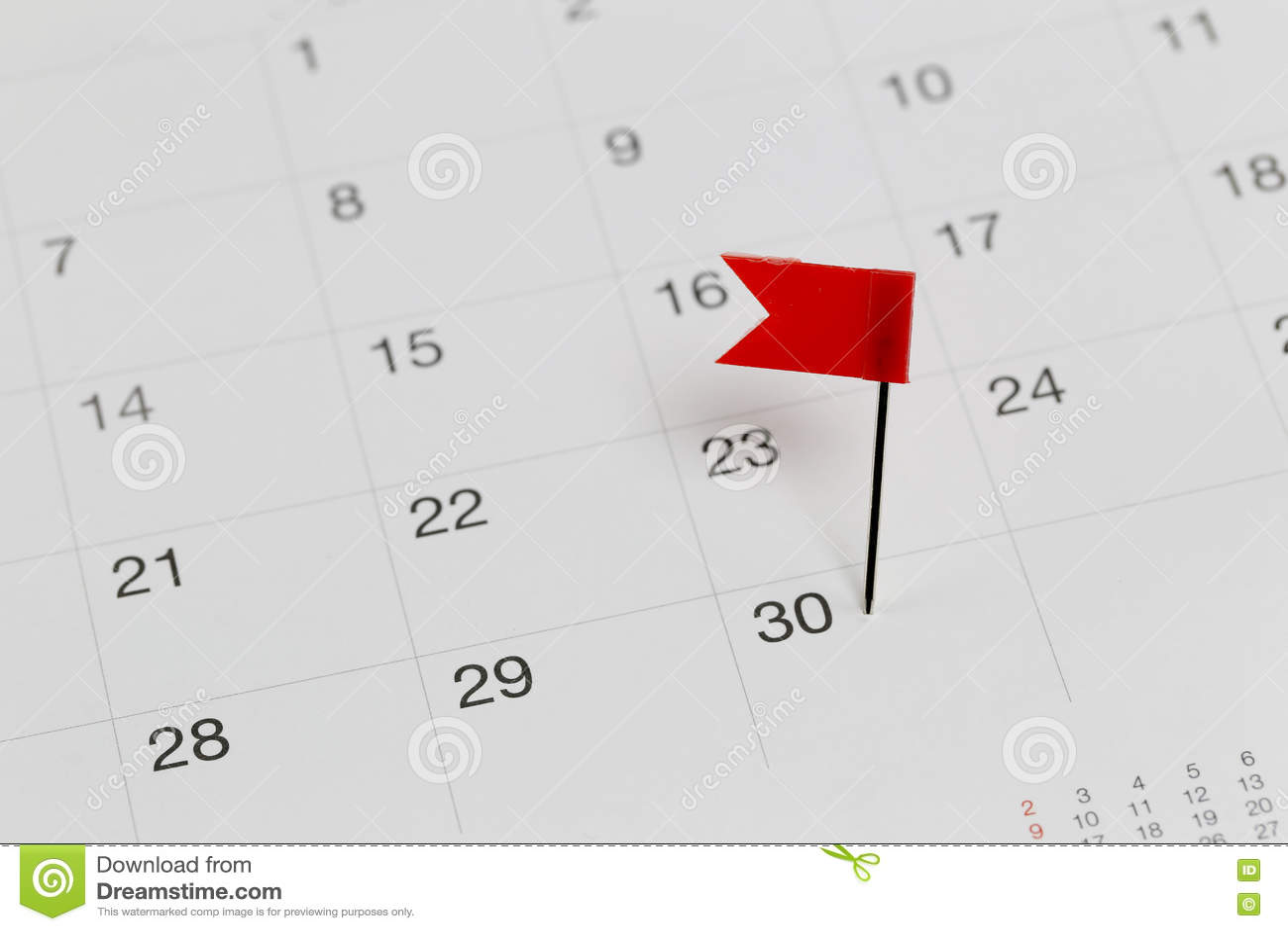 Rossi Sul Calendario.Perni Rossi Ai Gatti Selvatici Sul Calendario Accanto All