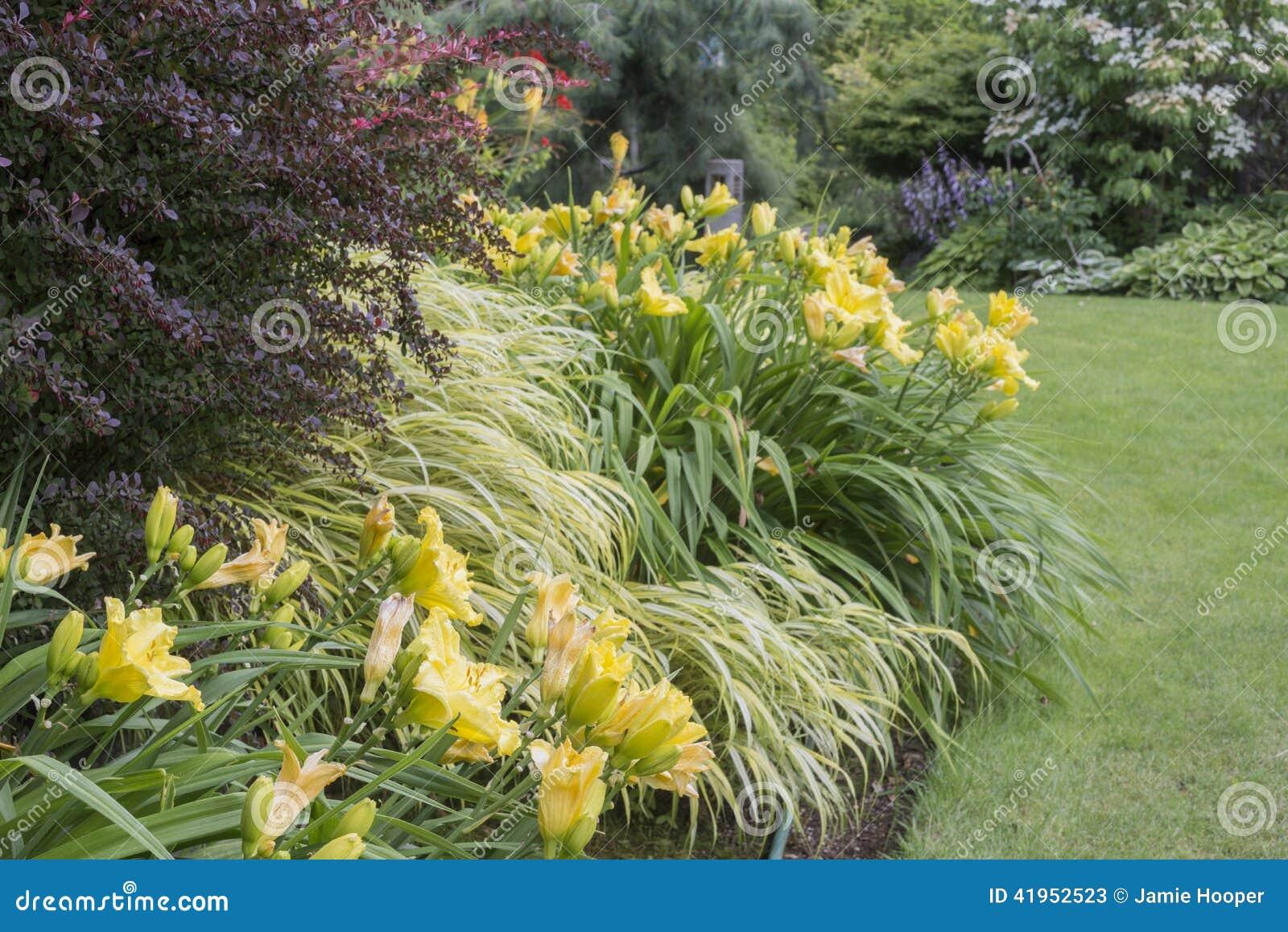 Perrenial ogród