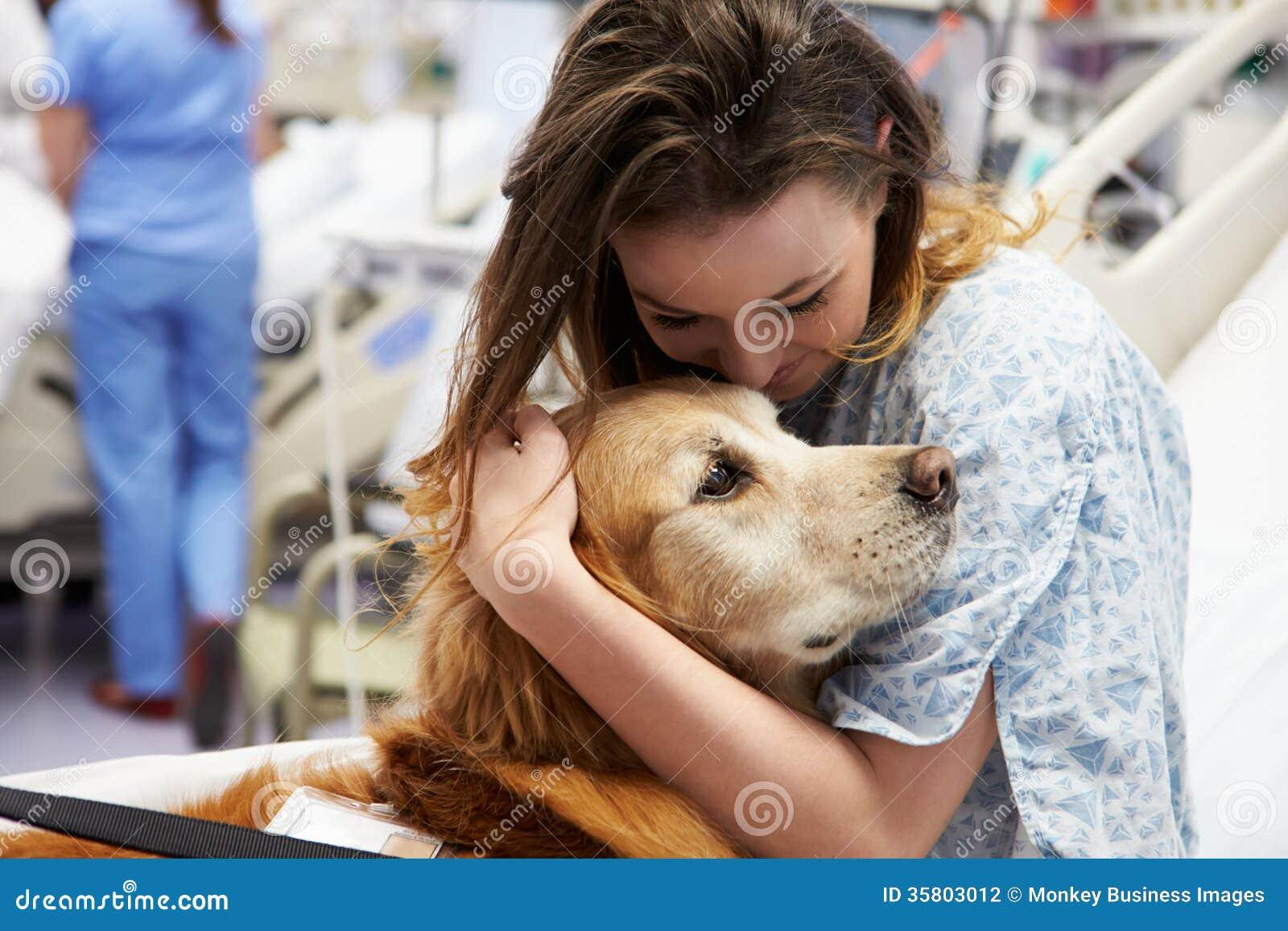 Perro de la terapia que visita al paciente femenino joven en hospital