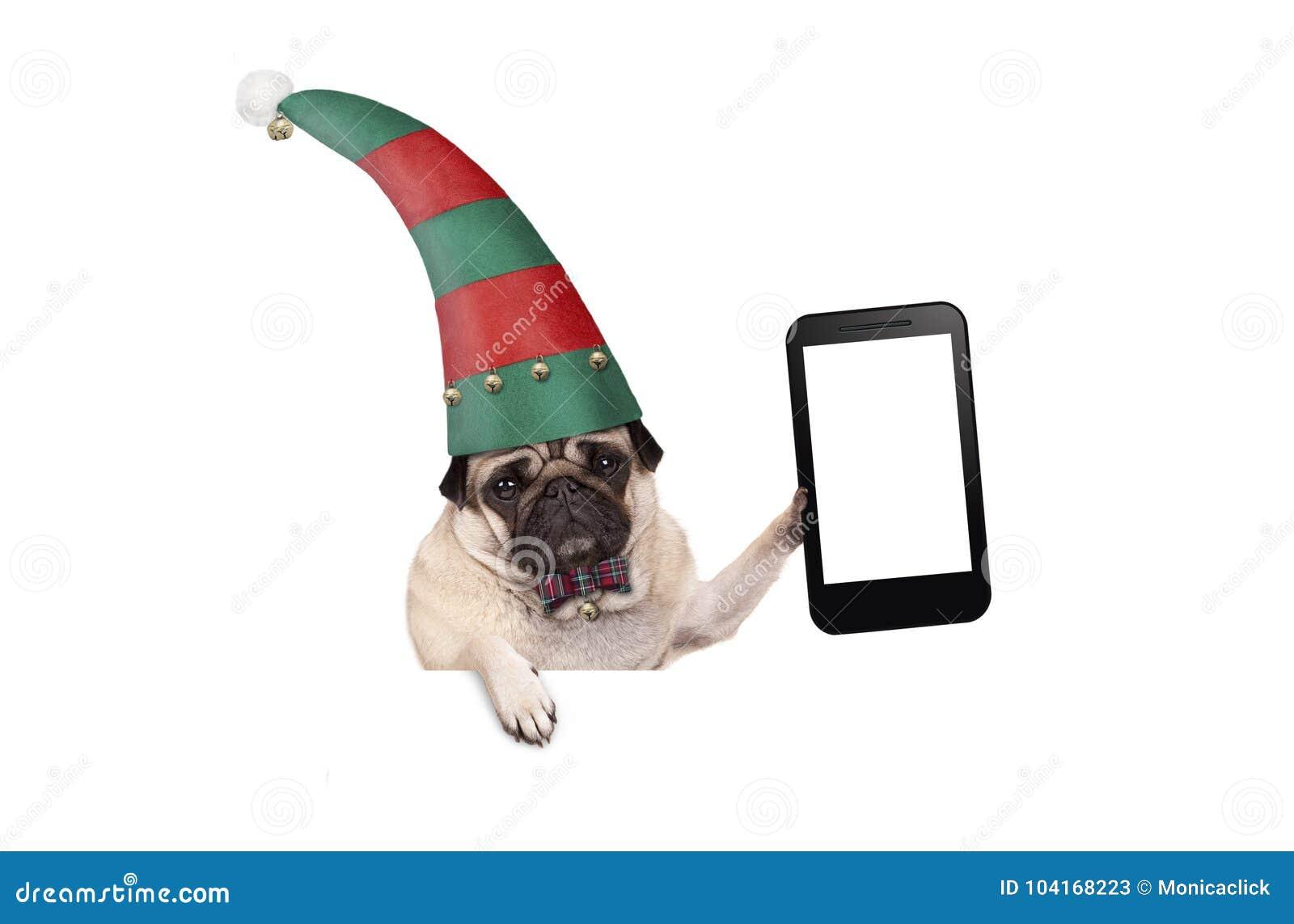 Perro de perrito del barro amasado de la Navidad con el sombrero rojo y verde del duende que soporta la tableta en blanco o el te
