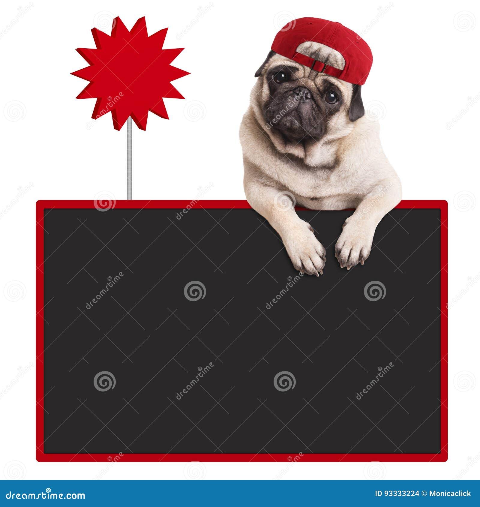 Perro De Perrito Del Barro Amasado Que Lleva El Casquillo Rojo ...